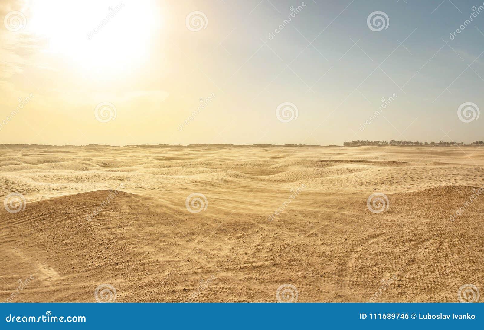 Pusta płaska sahara, wiatrowy tworzy piaska pył