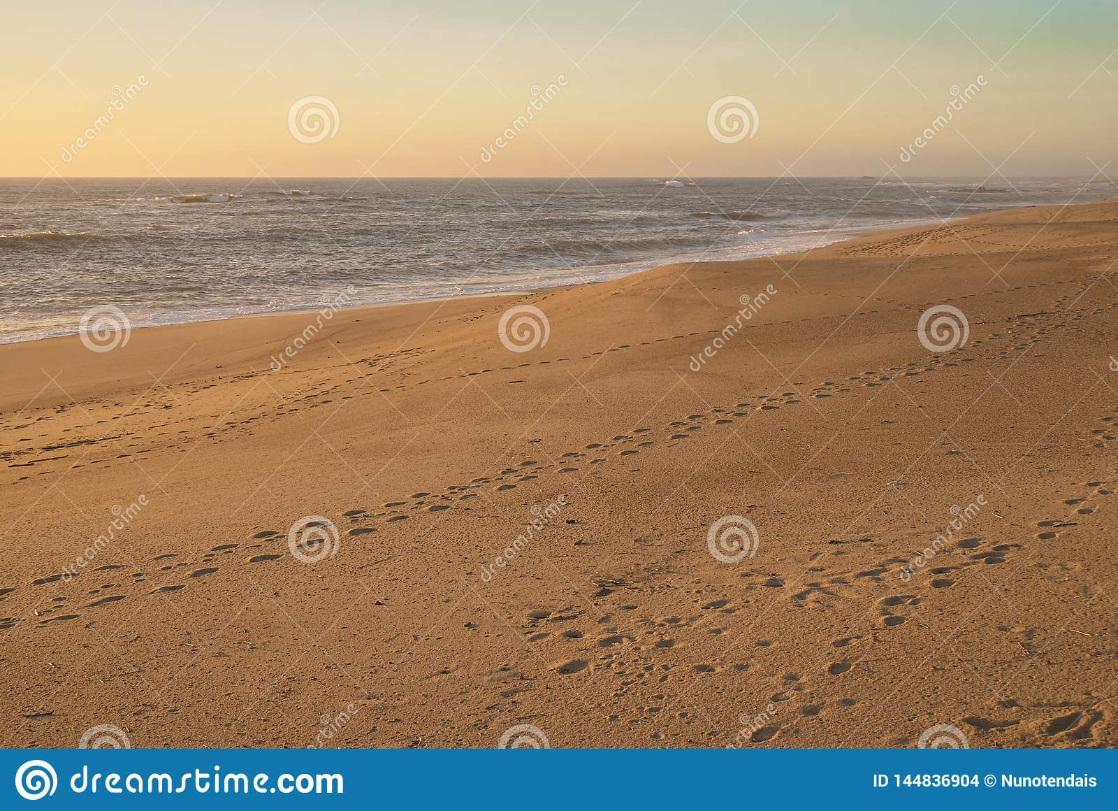 Puste tropy beach
