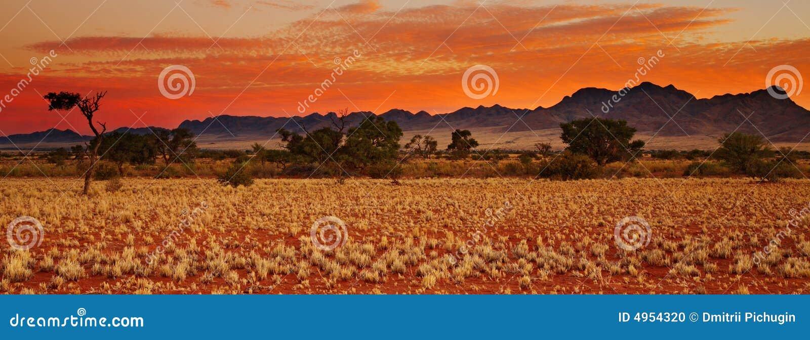 Pustynię Kalahari