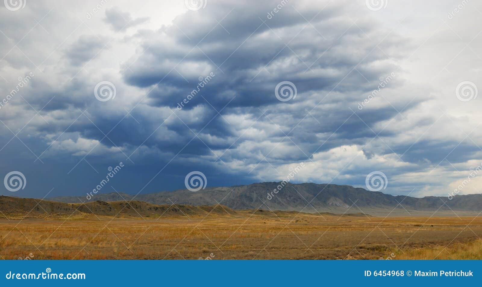 Pustynna burza