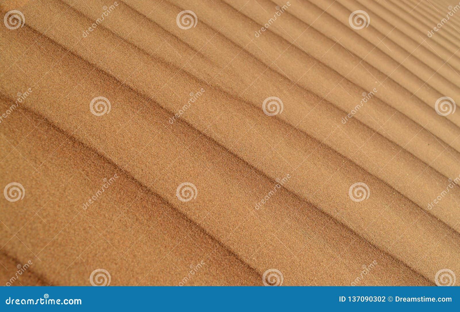 Pustynny piasek diuny tła wzór