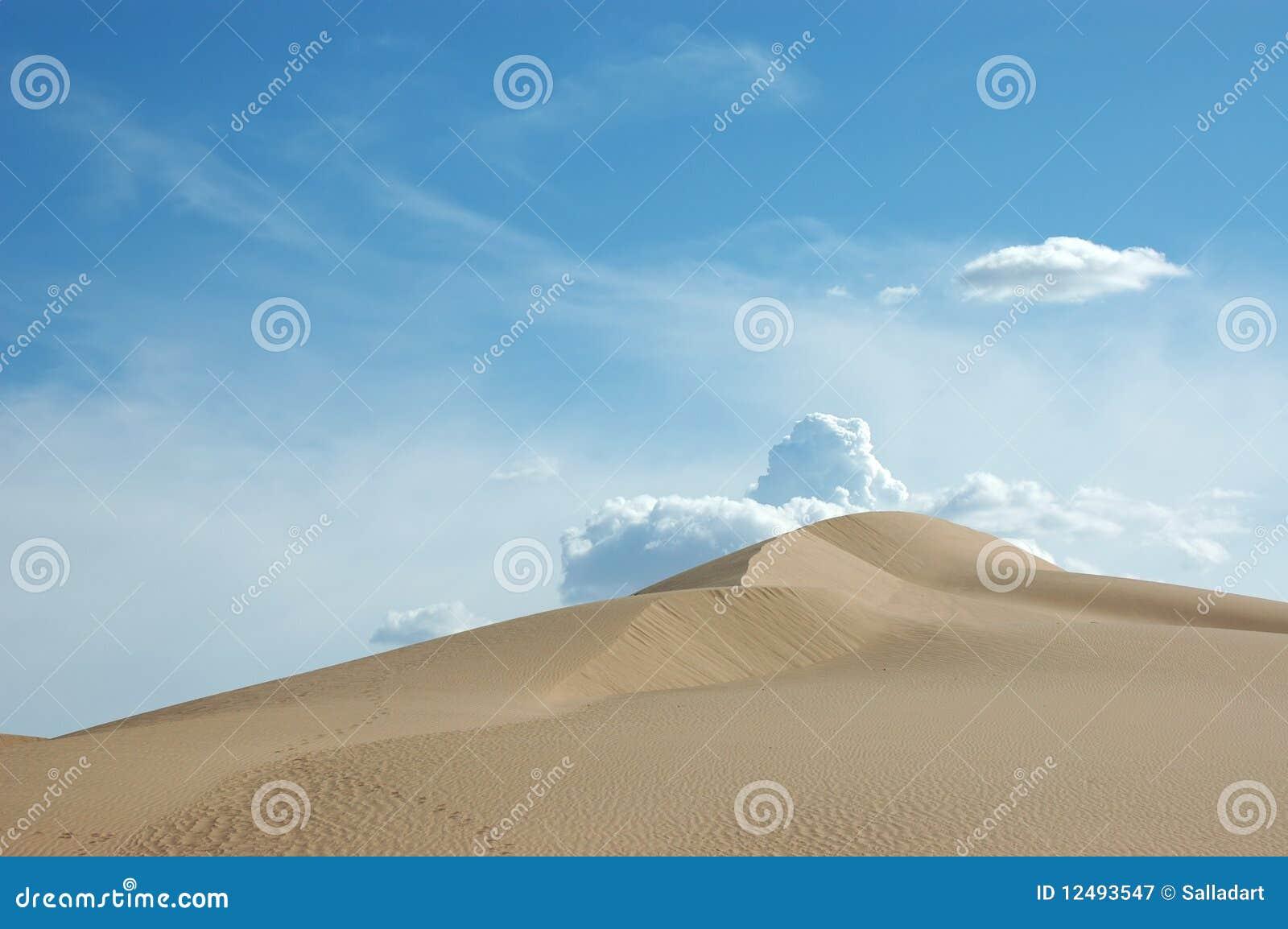 Pustynny wydmowy piasek