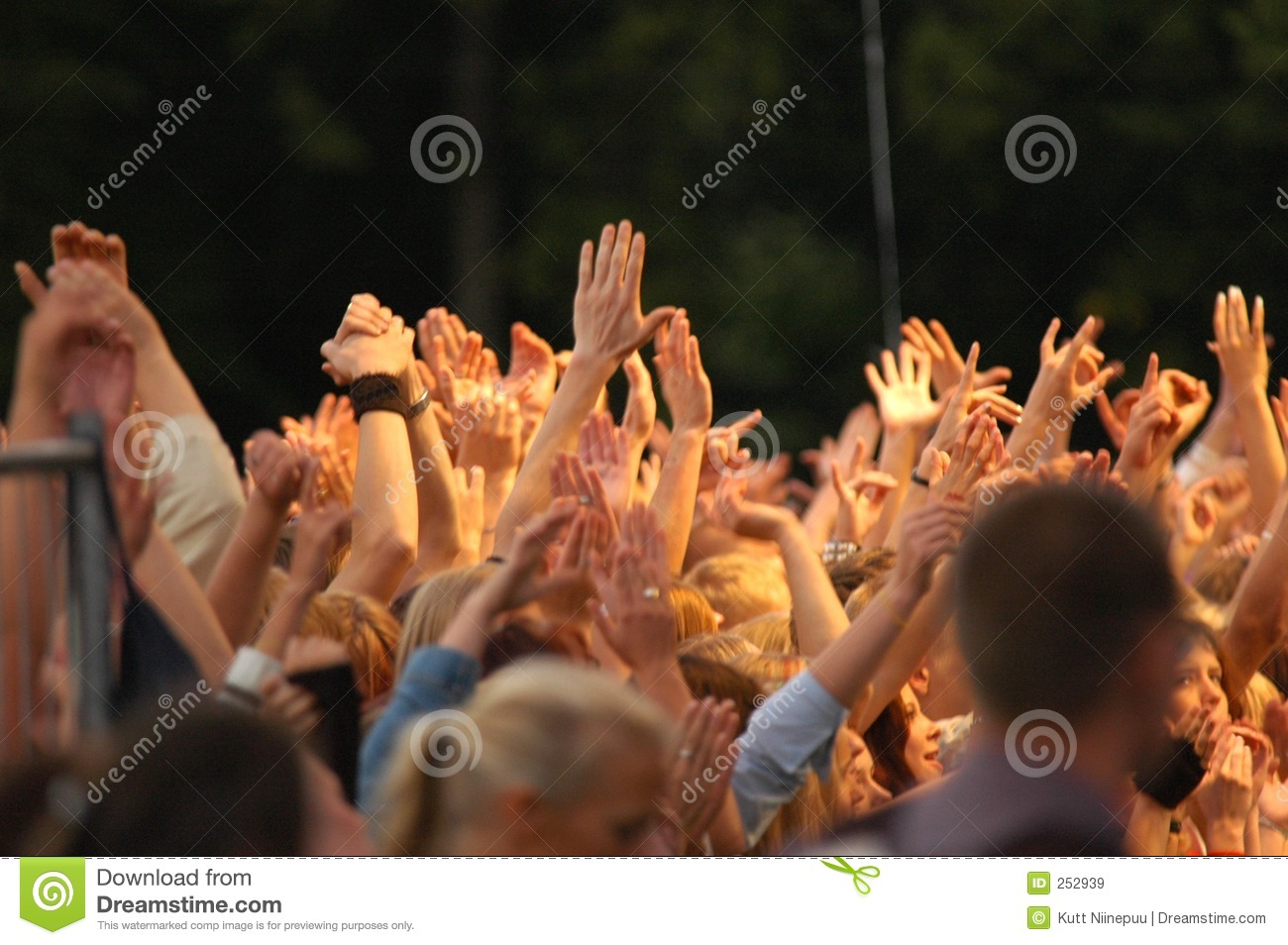 Put Your Hands In The Air! Royalty Free Stock Images ... Hands In The Air Rock Concert