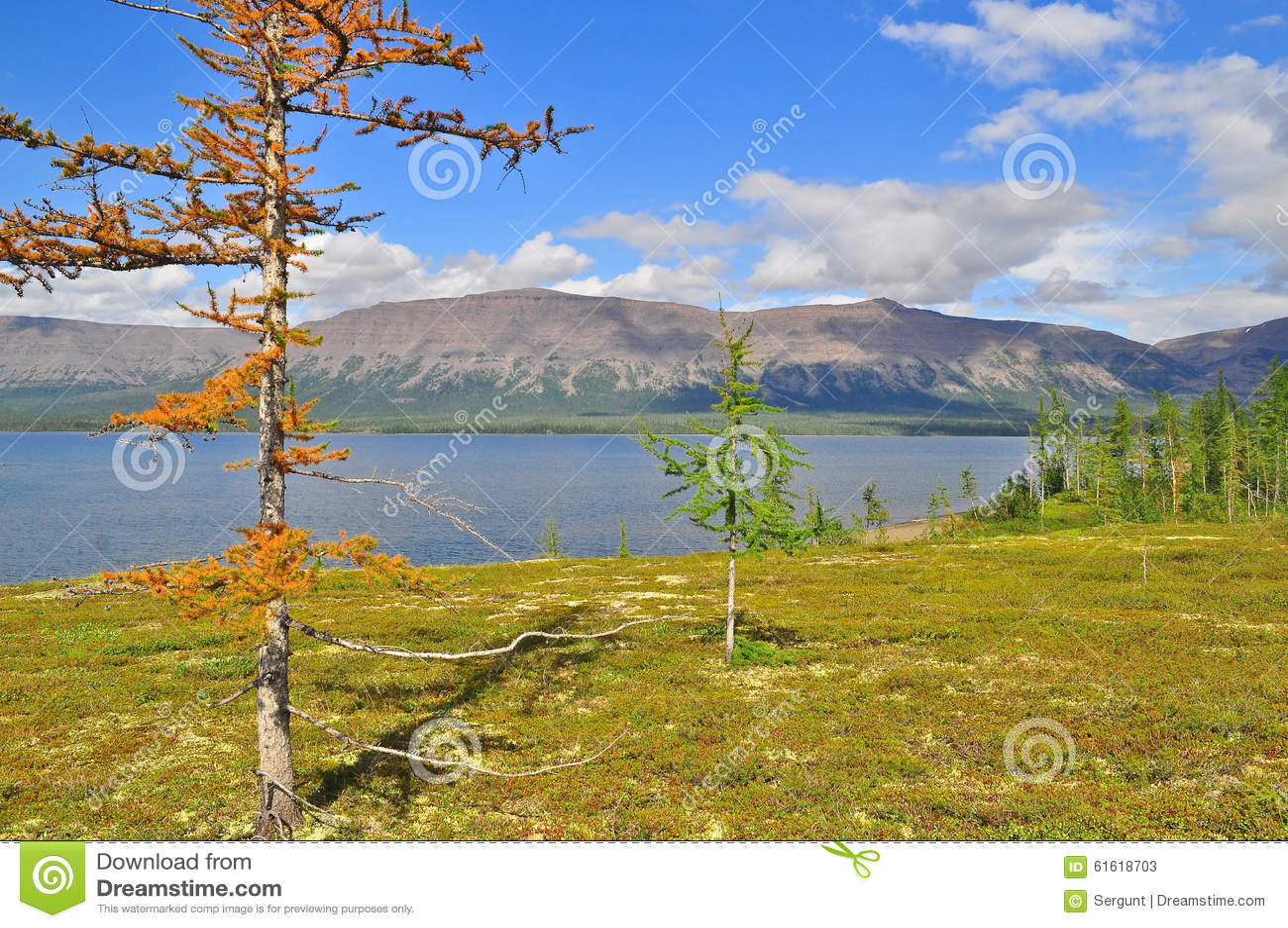 Putorana高原的Mountain湖