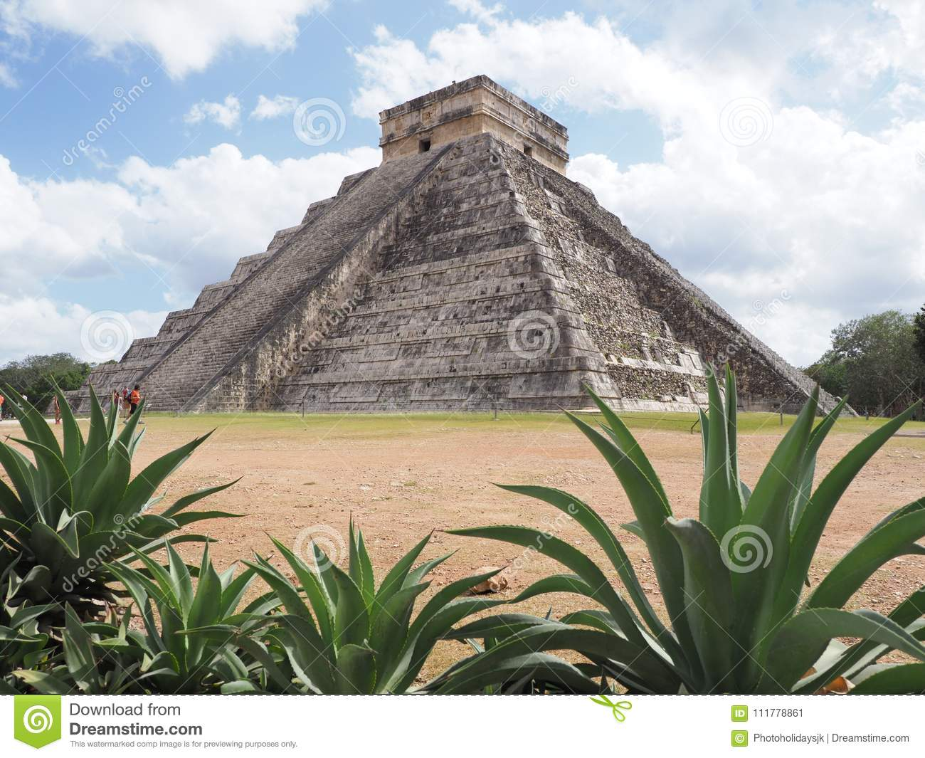 Pyramid and agaves in Chichen Itza mayan town in Mexico