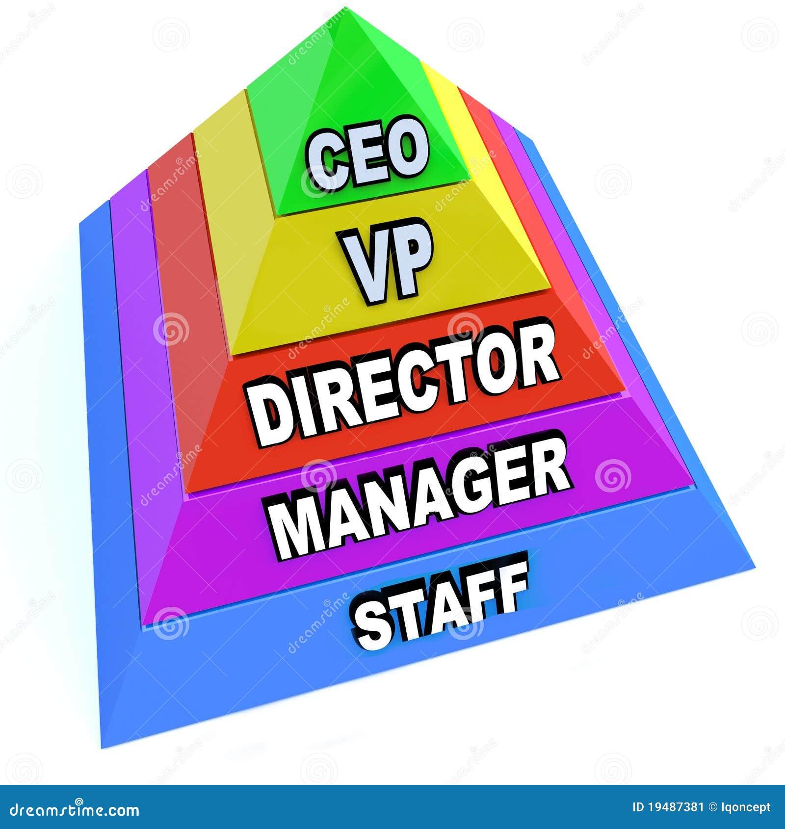 Pyramide des niveaux de hiérarchie de commandements dans l organisation