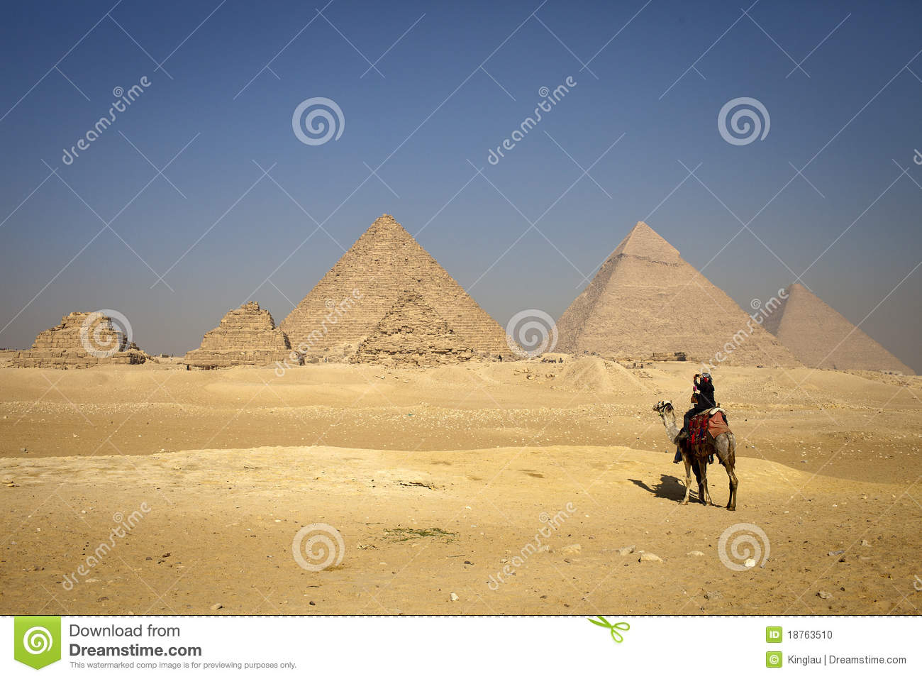 Pyramids And Alone Camel, Lonely People Stock Photo - Image: 18763510