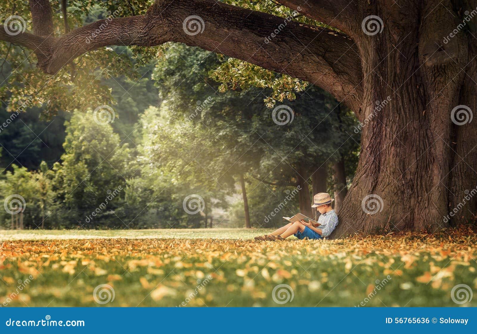 Pys som läser en bok under stort lindträd