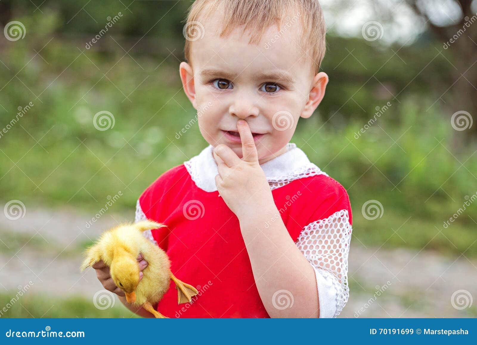 Pys som rymmer händer för en ankunge och ser in i kameran