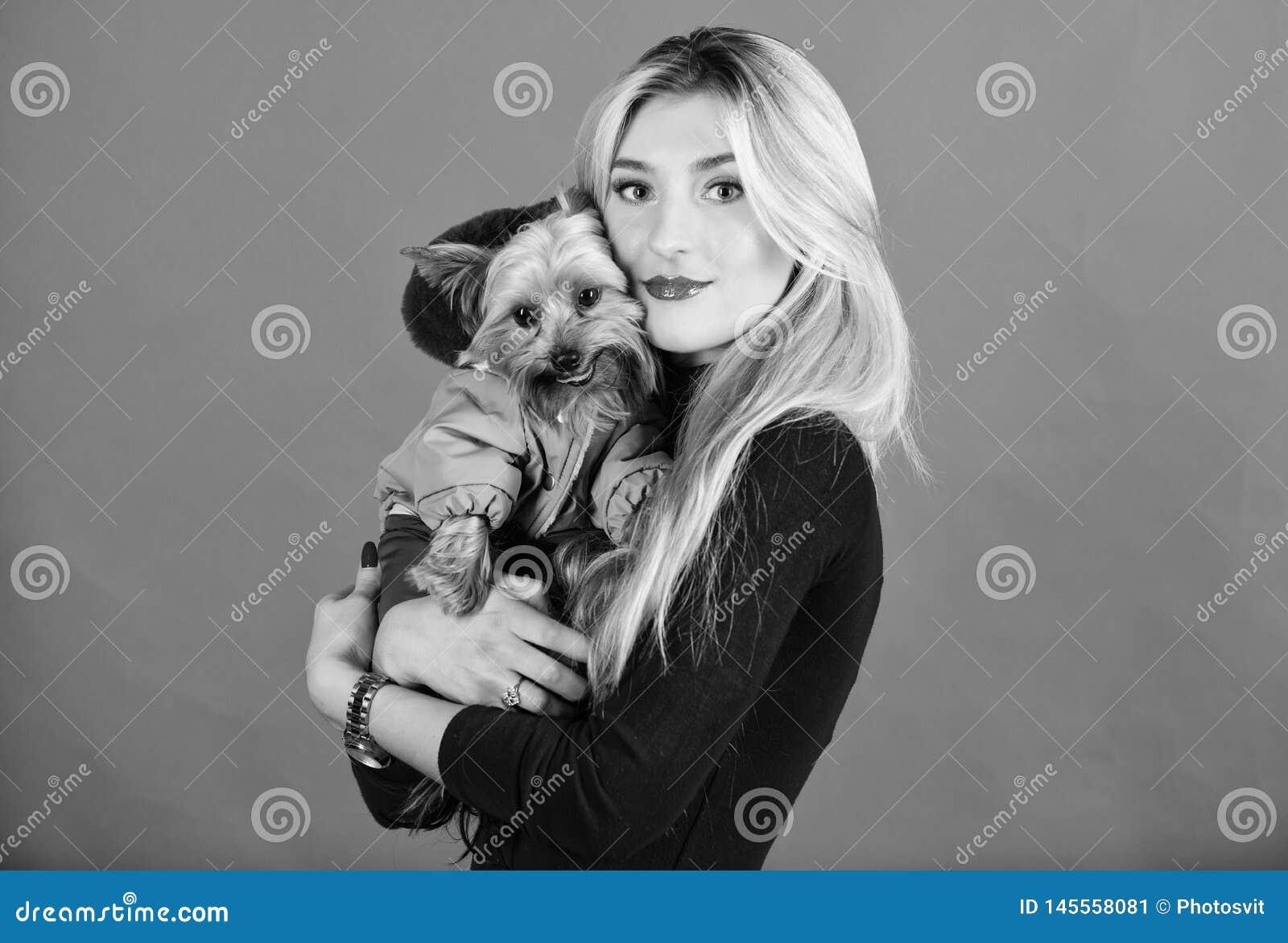 Qu? razas del perro deben llevar las capas Perro del abrazo de la muchacha peque?o en capa La mujer lleva el terrier de Yorkshire