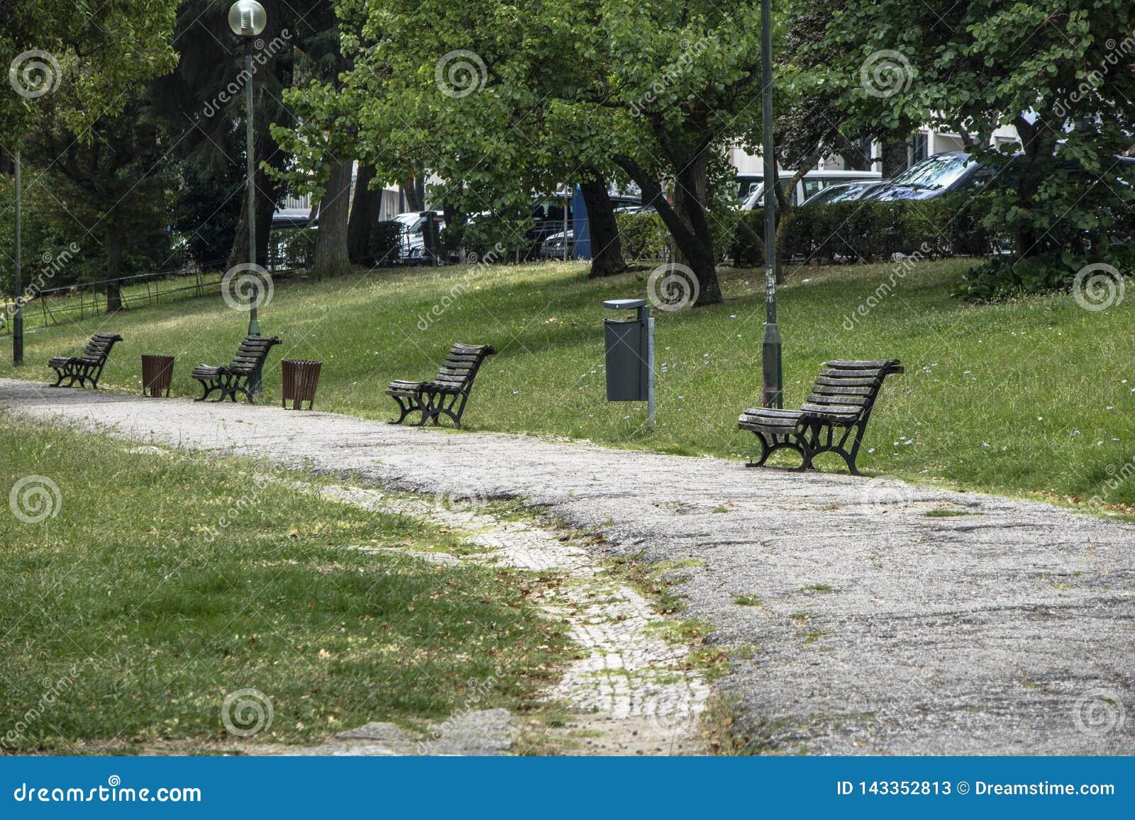 Quadrado quieto com bancos do jardim e lotes do verde