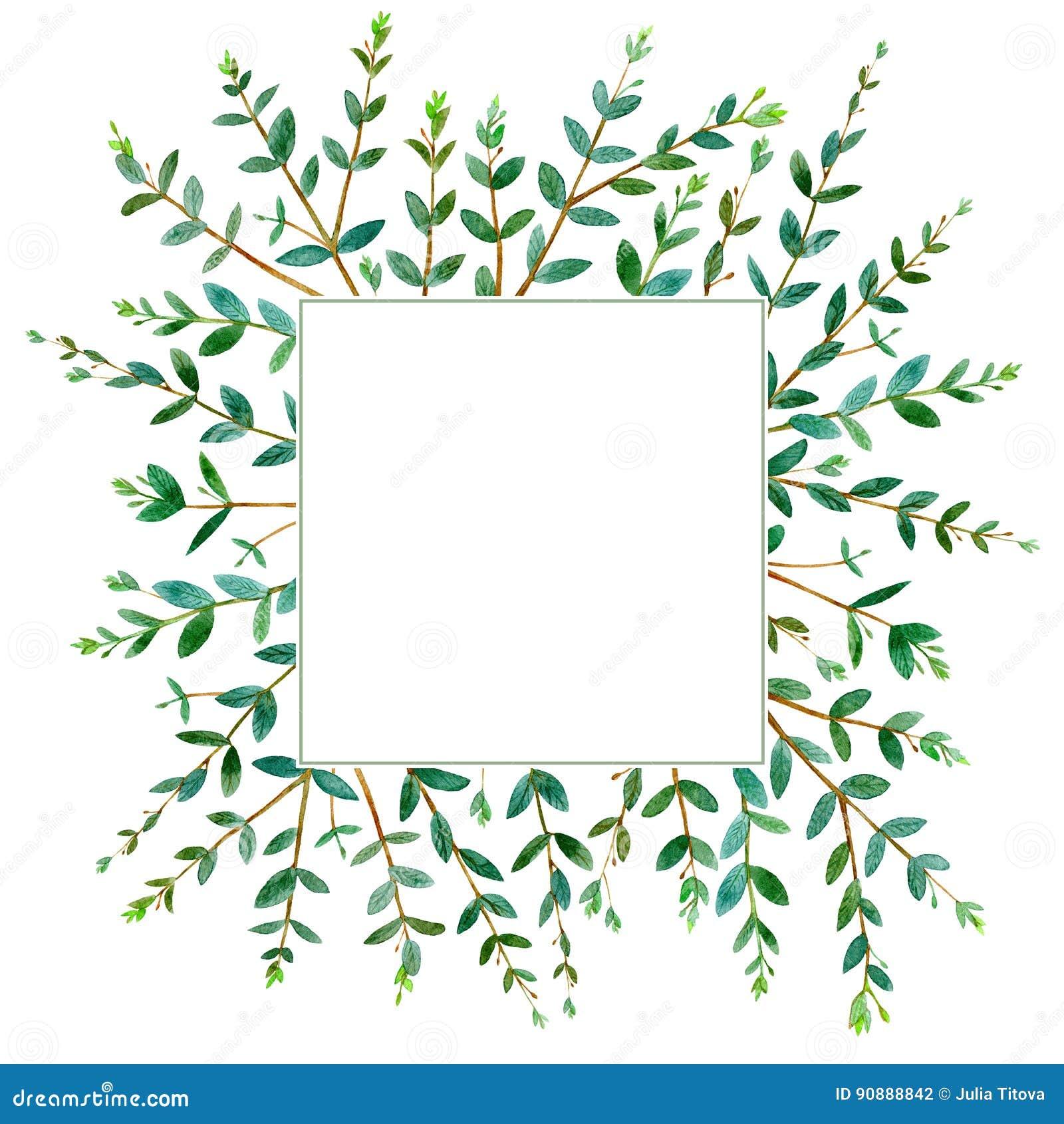 Quadratischer Mit Blumenkranz Girlande Eines Eukalyptus Verzweigt