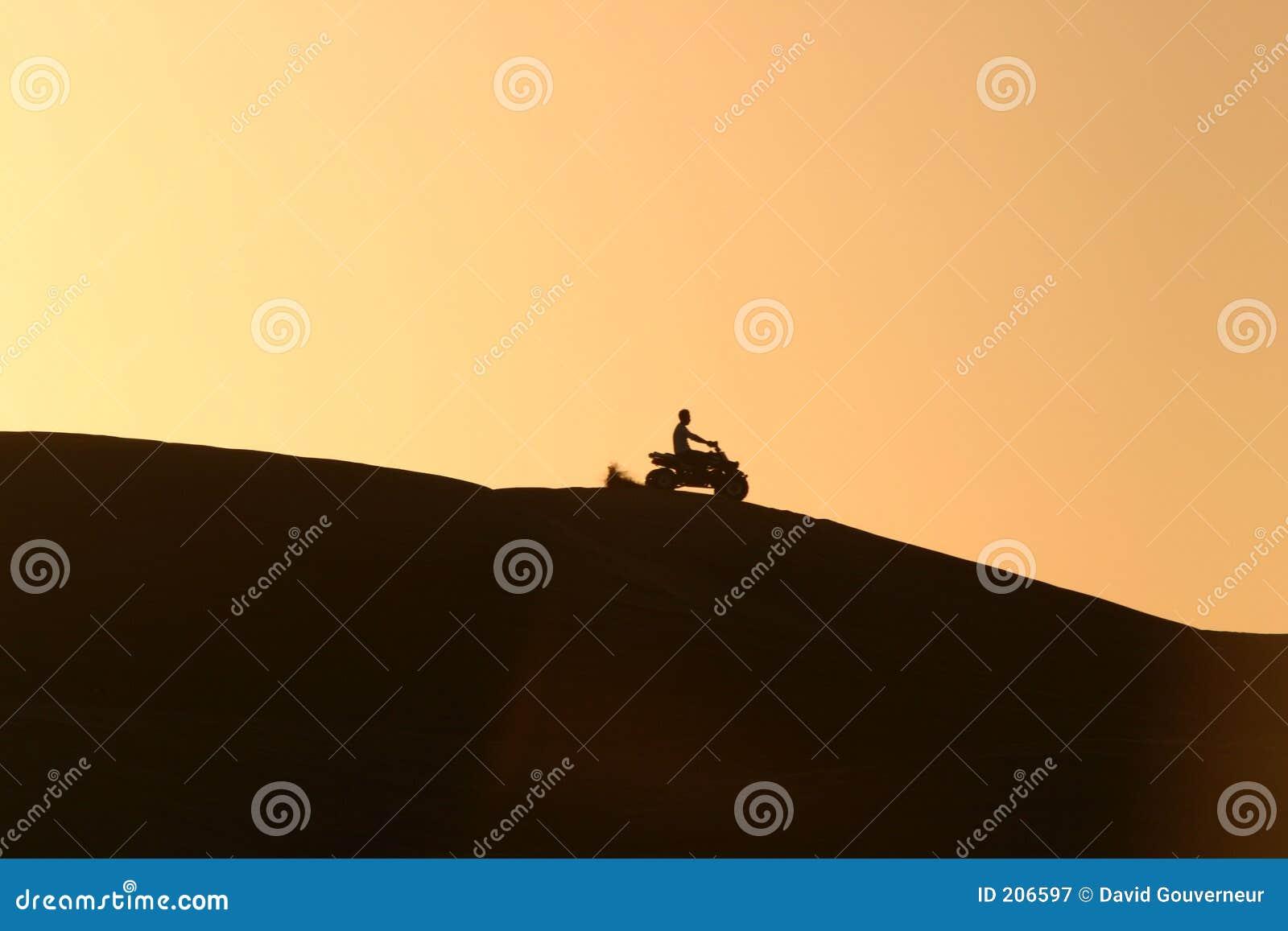 Quadrato che Biking nel deserto