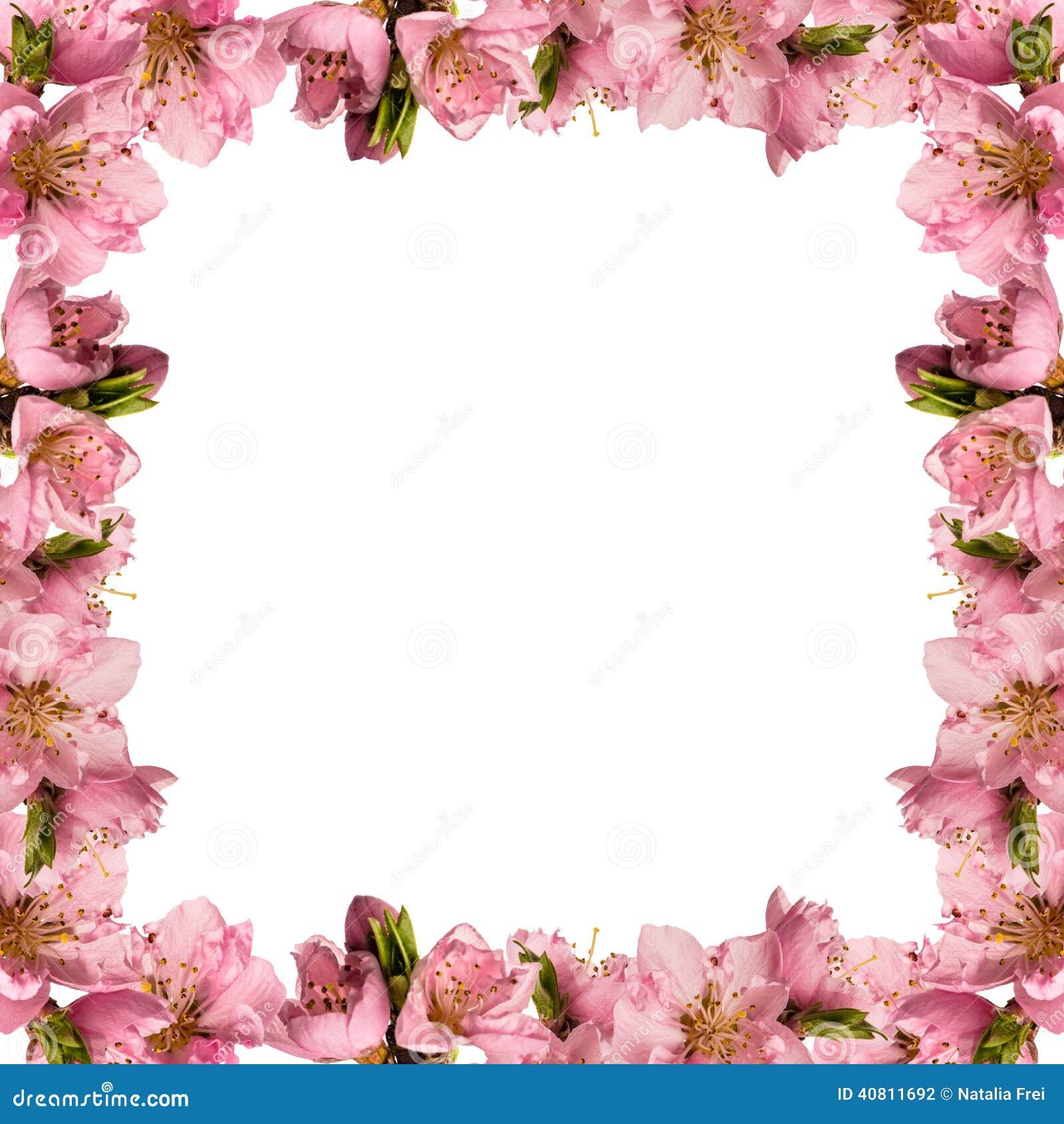 Quadro com flores do pêssego