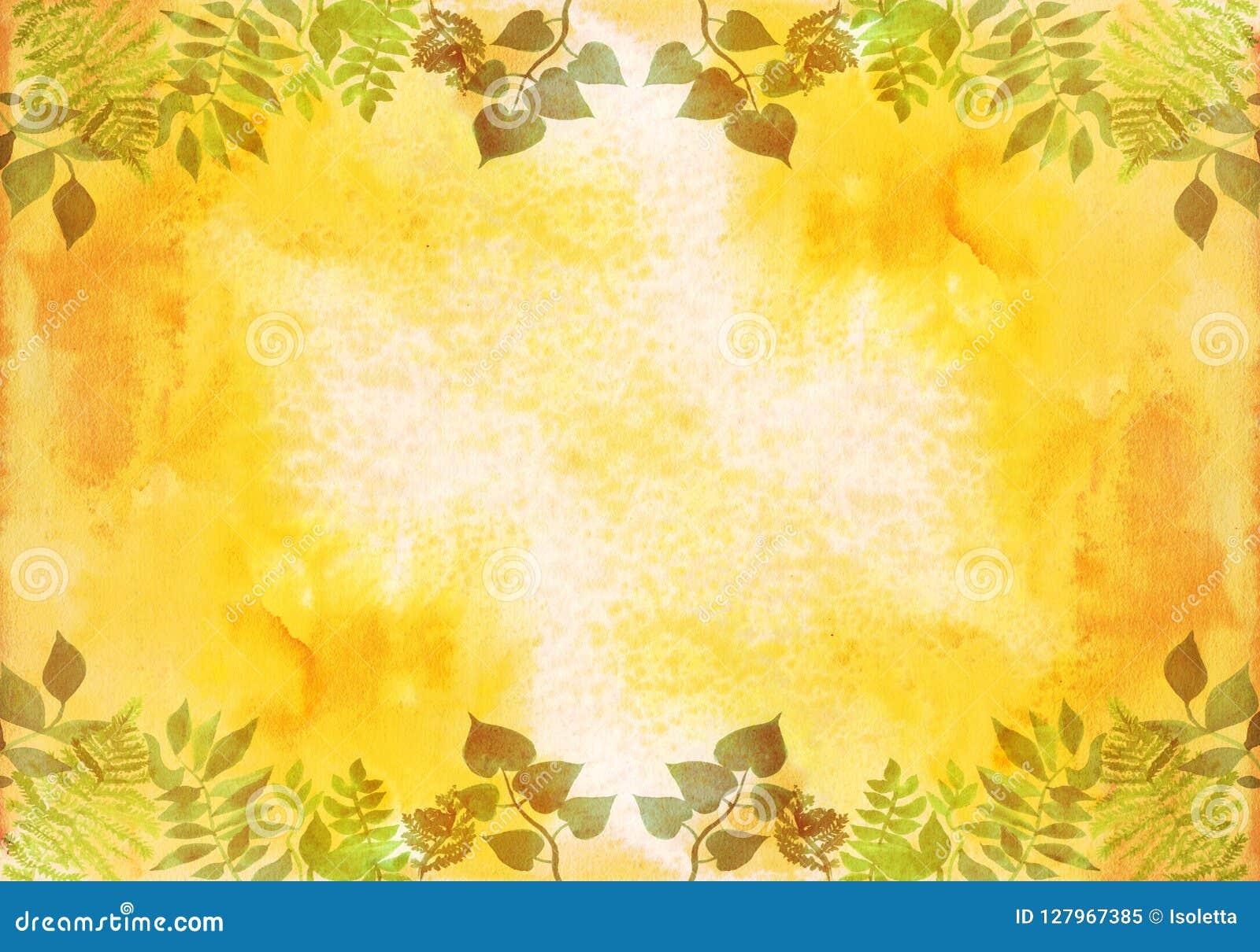 Quadro criativo para o cartaz, bandeira, cartões Elementos ervais da aquarela pintado à mão vibrante Detalhes botânicos