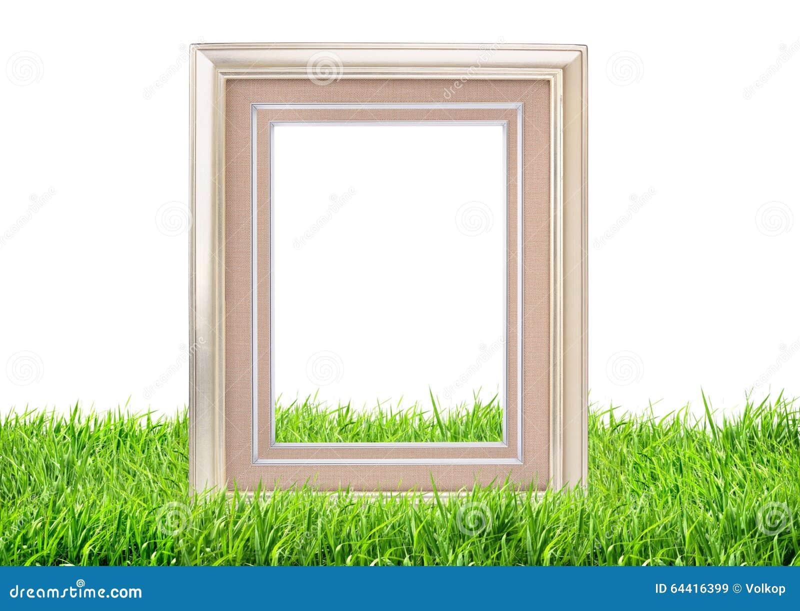 Quadro da foto no fundo da natureza da grama verde