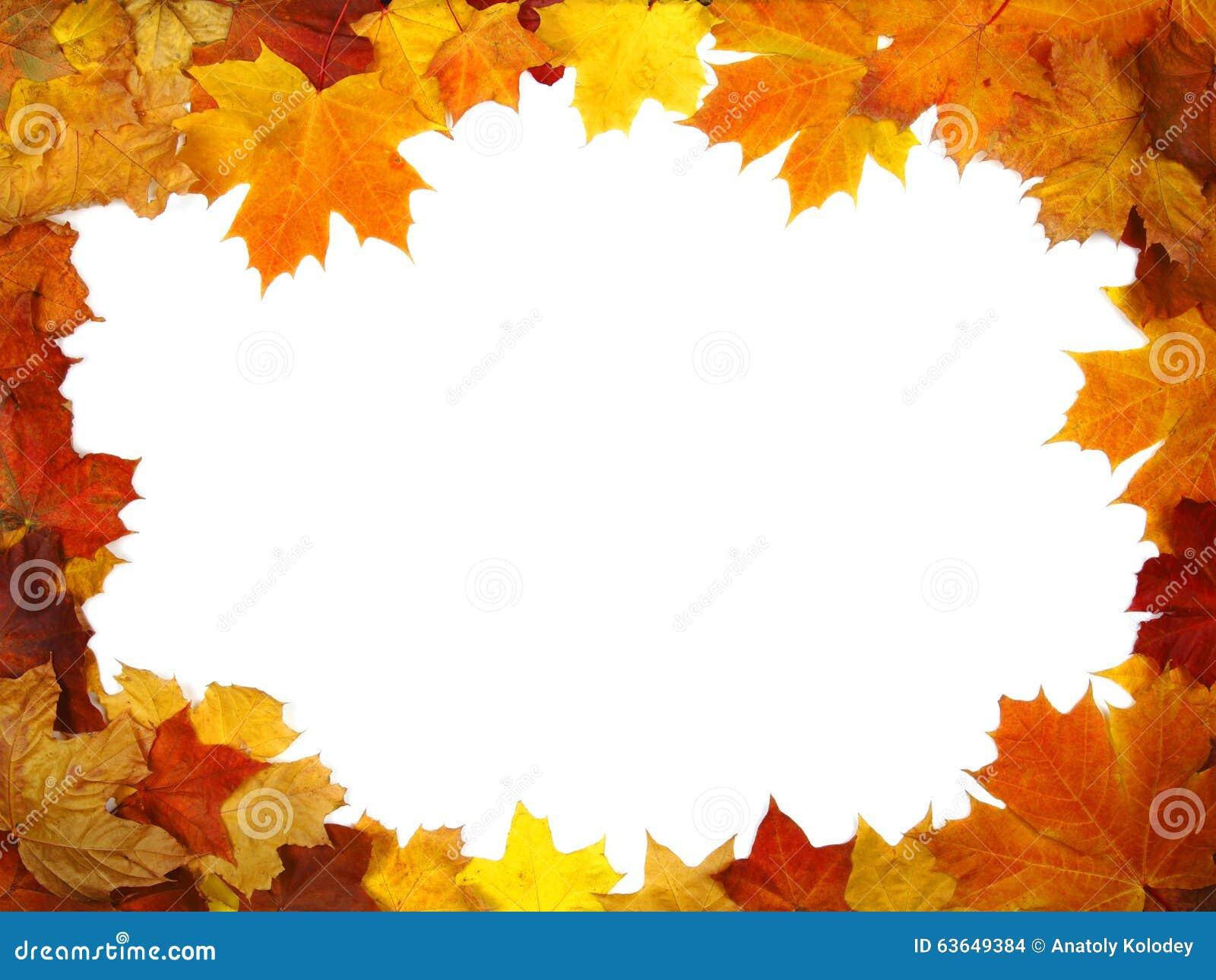 Quadro das folhas de outono coloridas