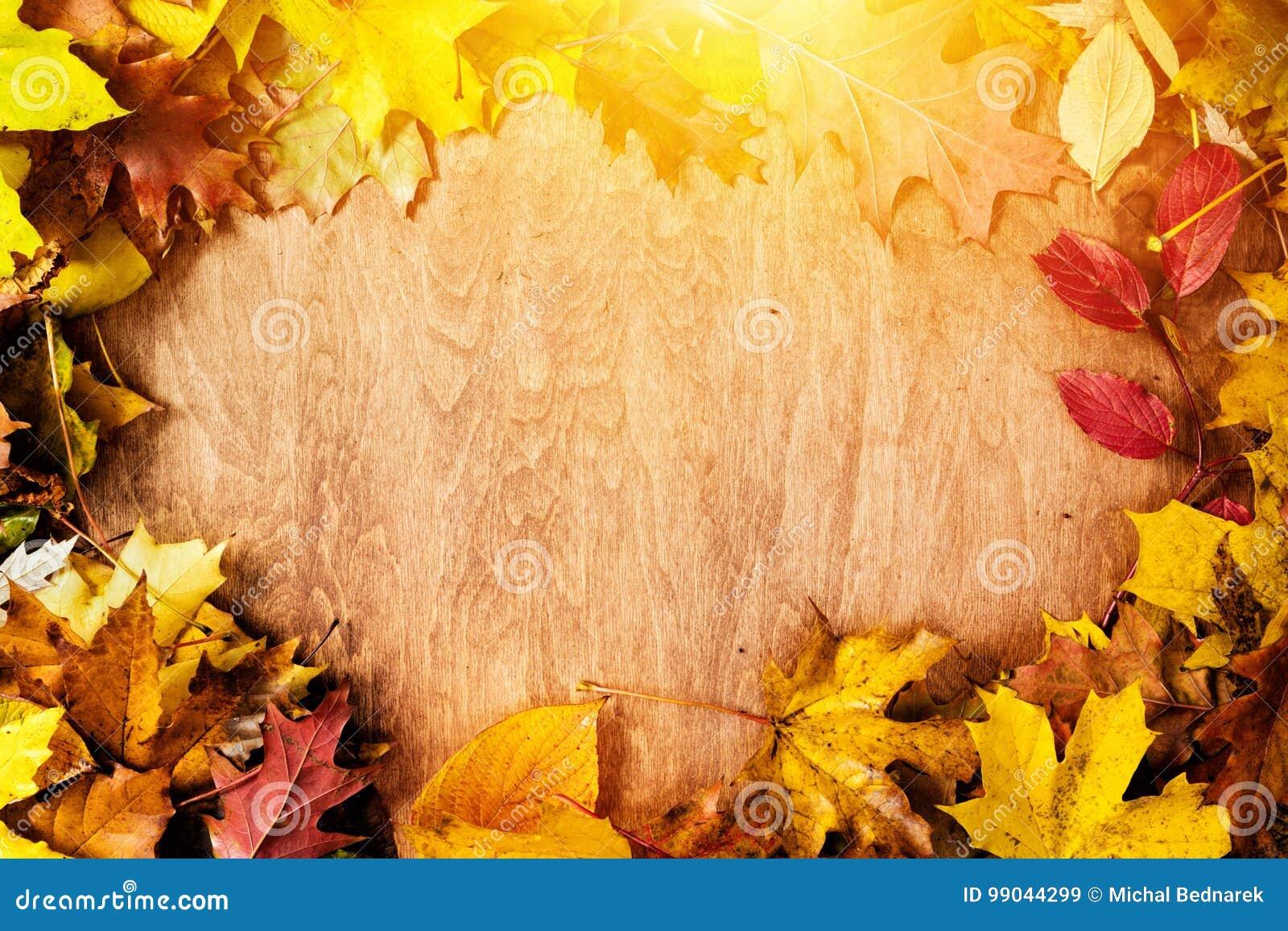 Quadro feito das folhas da queda na madeira Fundo do outono