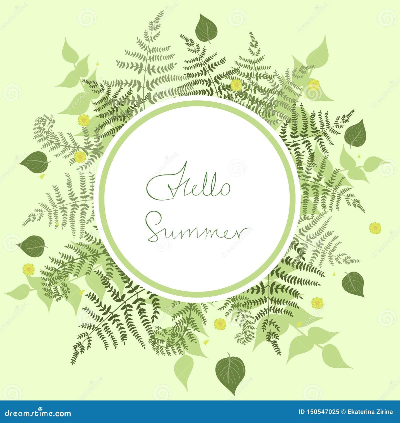 Quadro redondo da samambaia com o verão das palavras olá! Molde do vetor