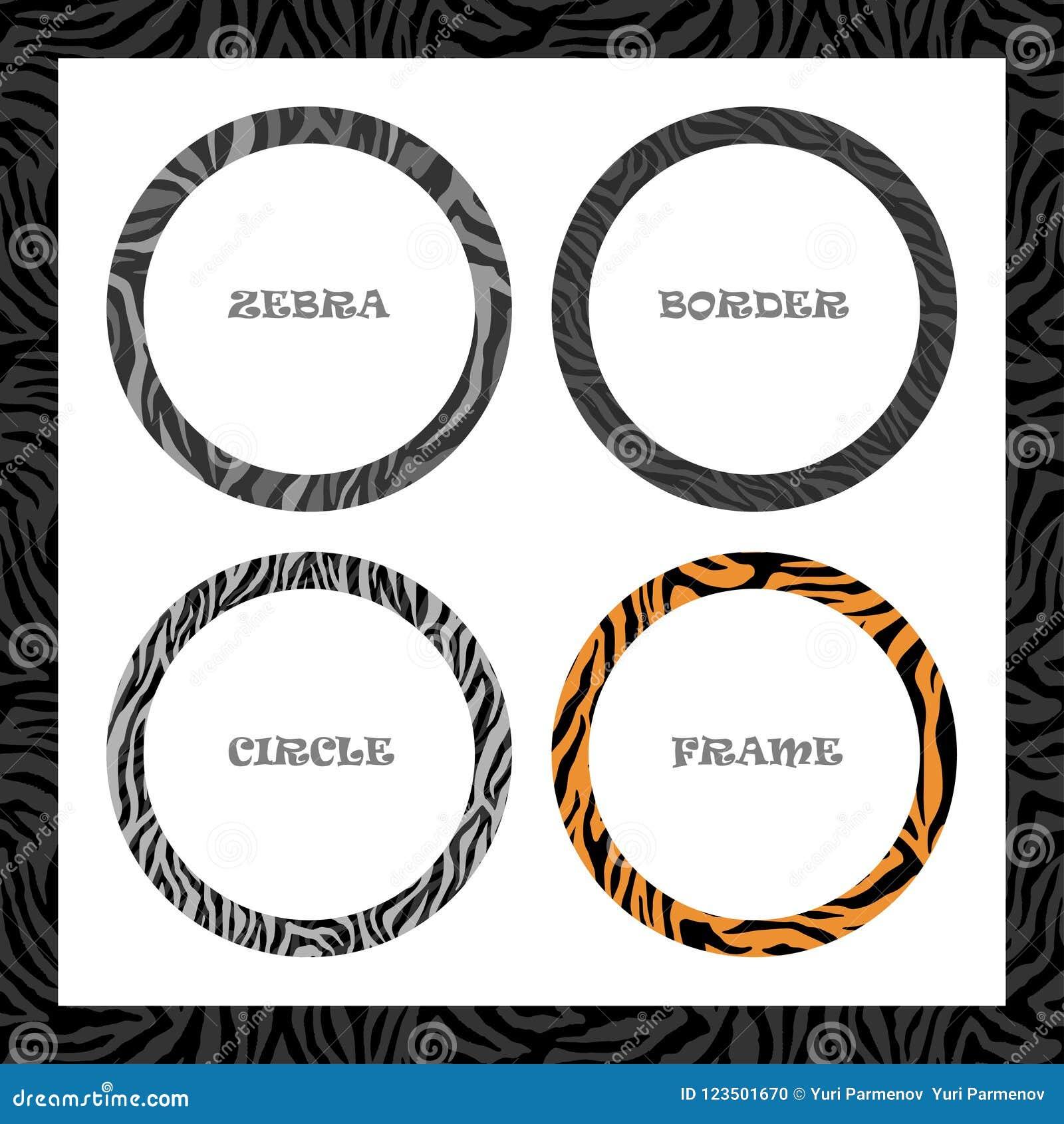 Quadro, teste padrão redondos da zebra, grupo do molde da beira do círculo, para o projeto da tampa ou da bandeira Vetor