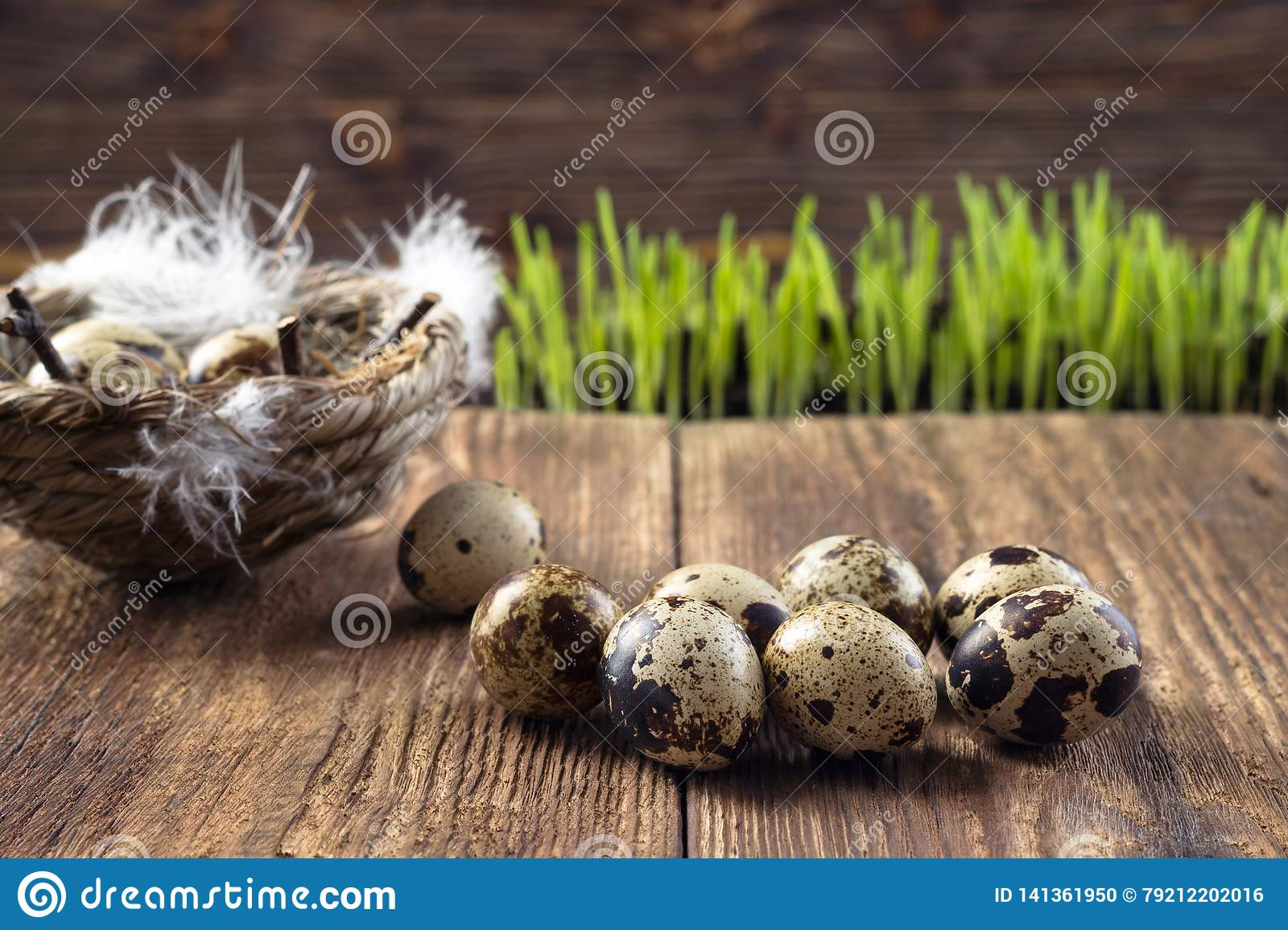 Quail eggs in a nest on a wooden table