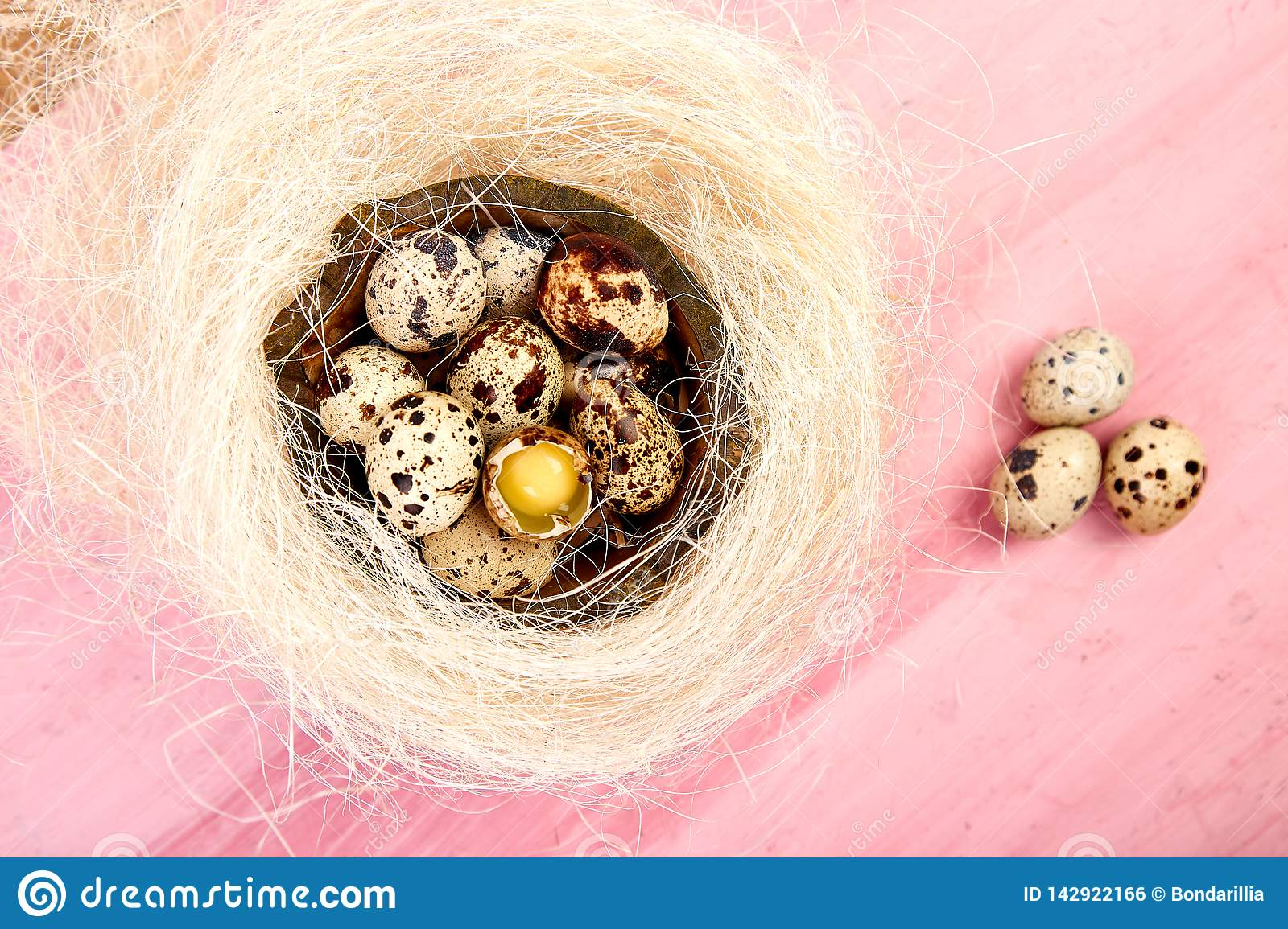 Quail eggs on pink background with willow branch