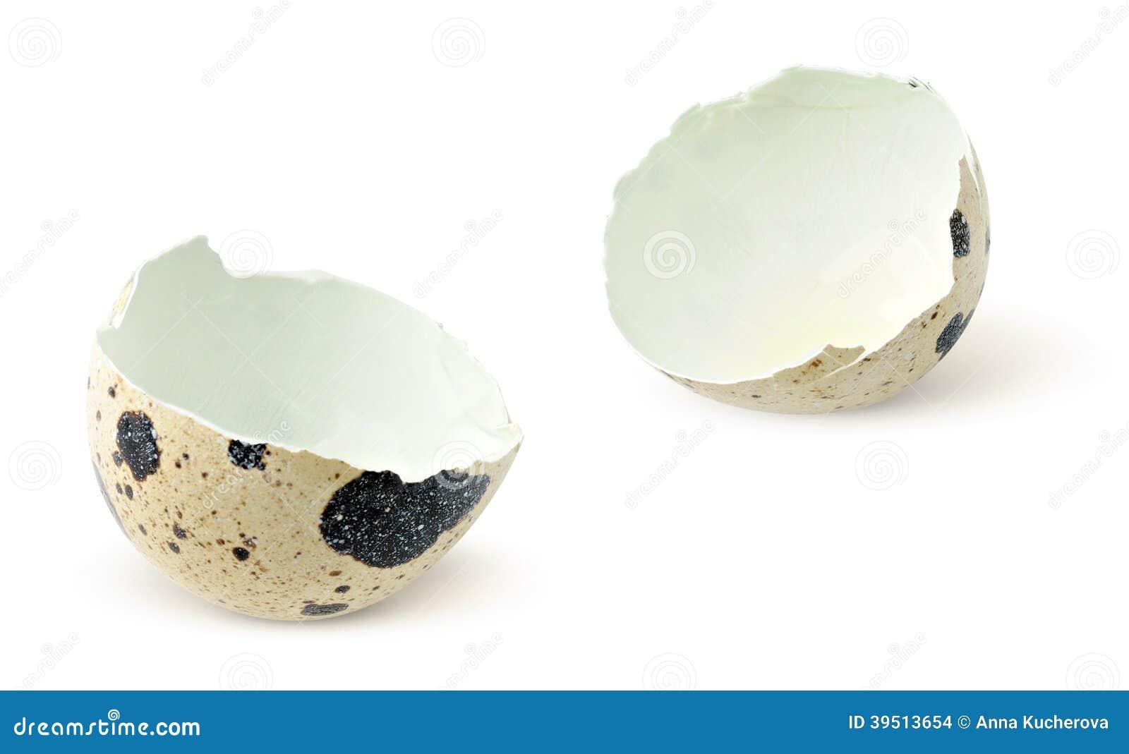 Quail eggshells