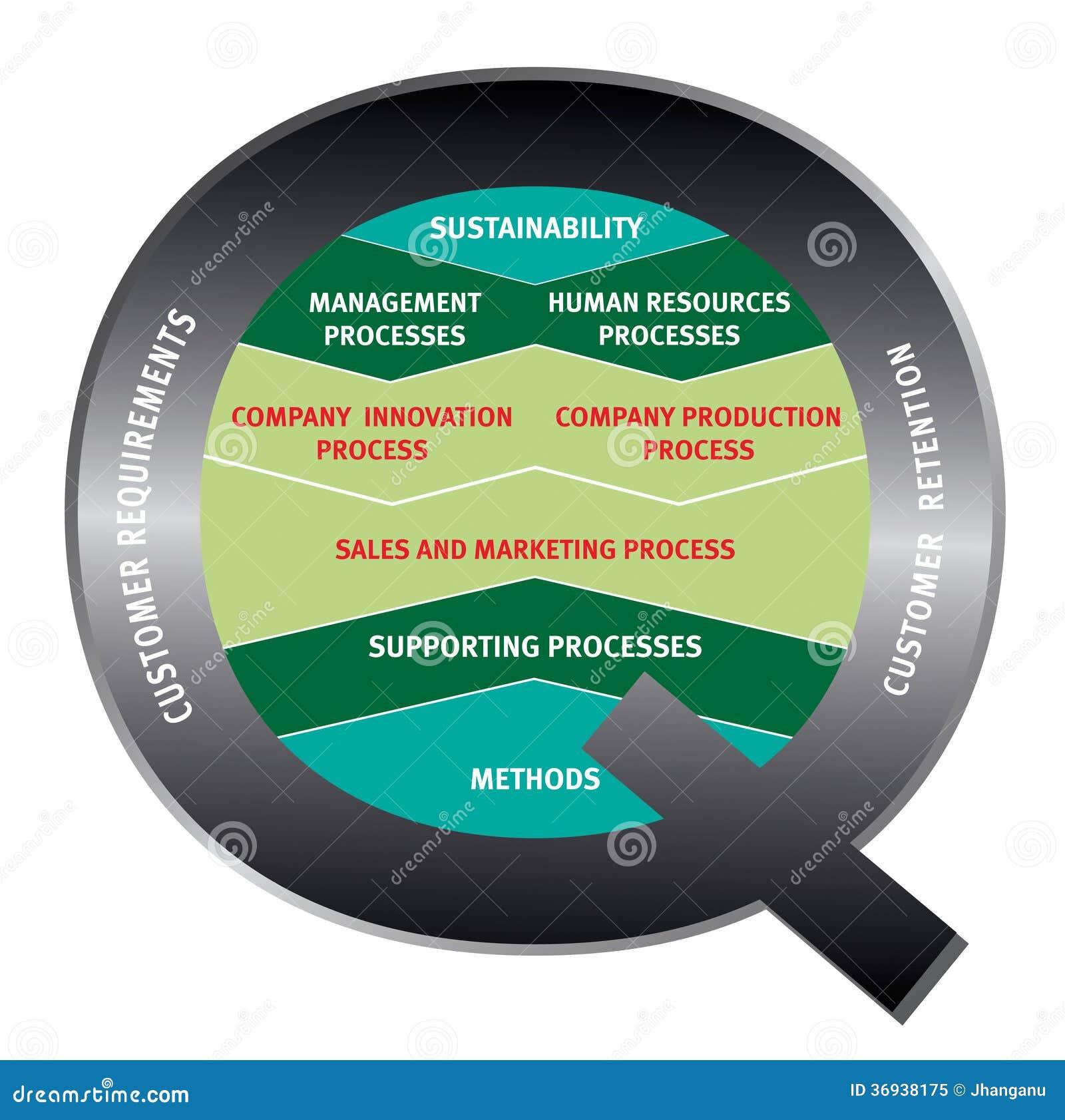 Quality company process