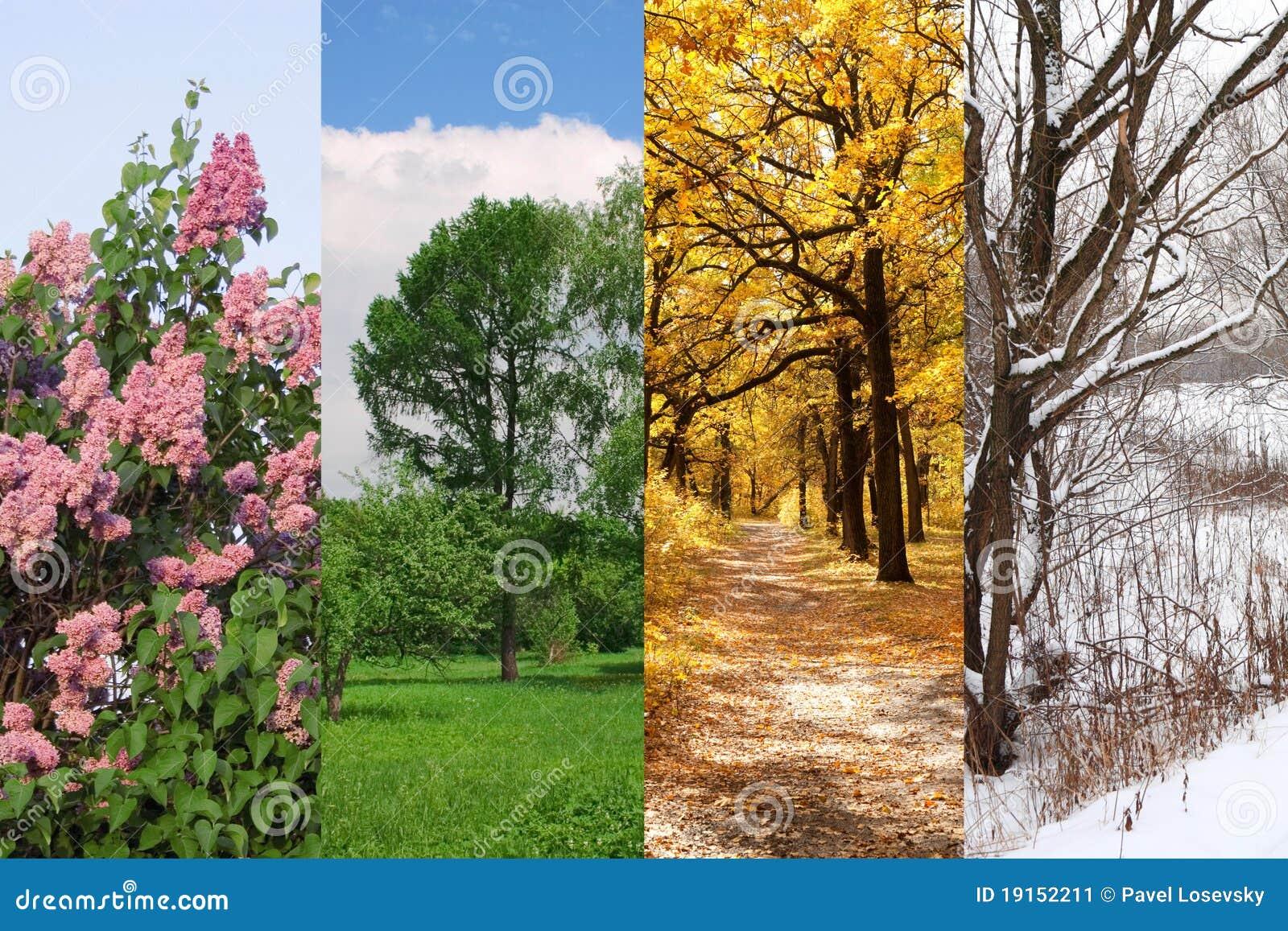 Quatre saisons jaillissent, été, automne, l hiver