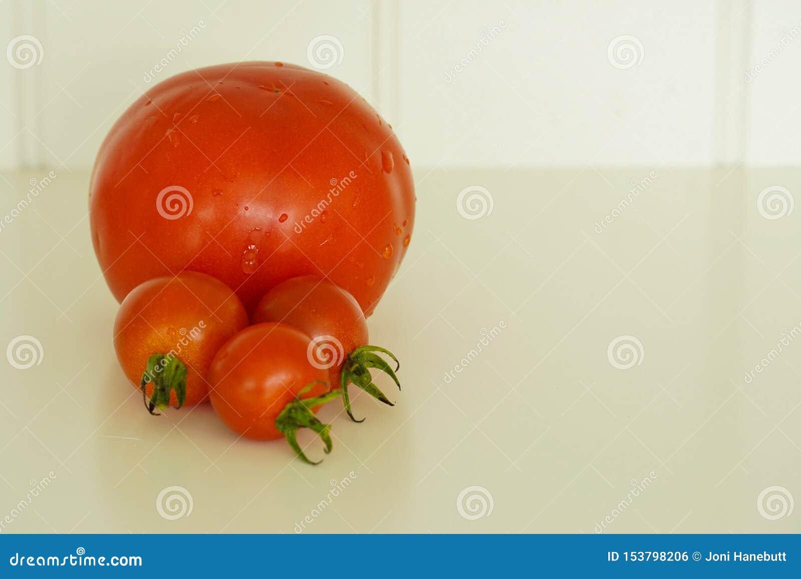 Quatre tomates rouges fraîches du jardin
