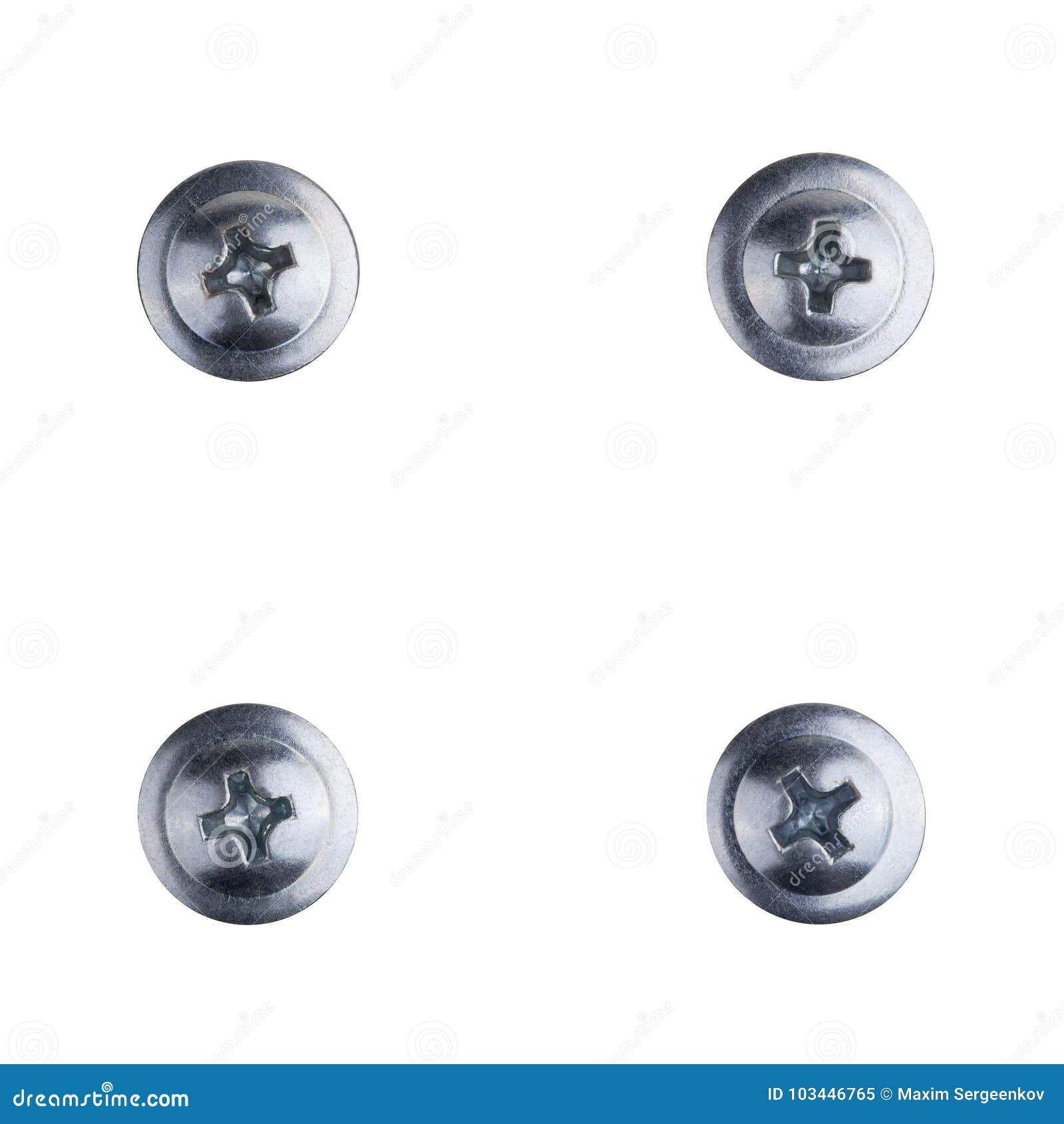 Quatro cabeças do parafuso no fundo branco