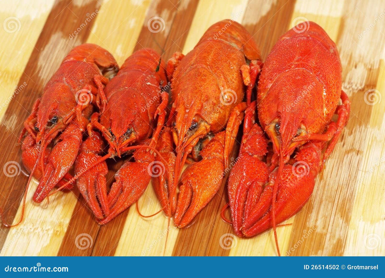 Quatro crawfishes fervidos vermelhos tomados o close up.