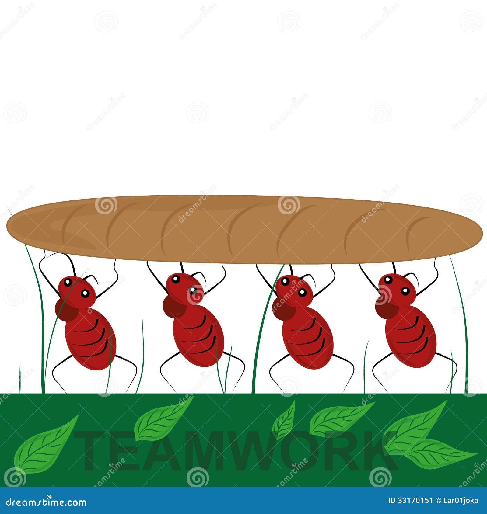 Quatro formigas em equipe