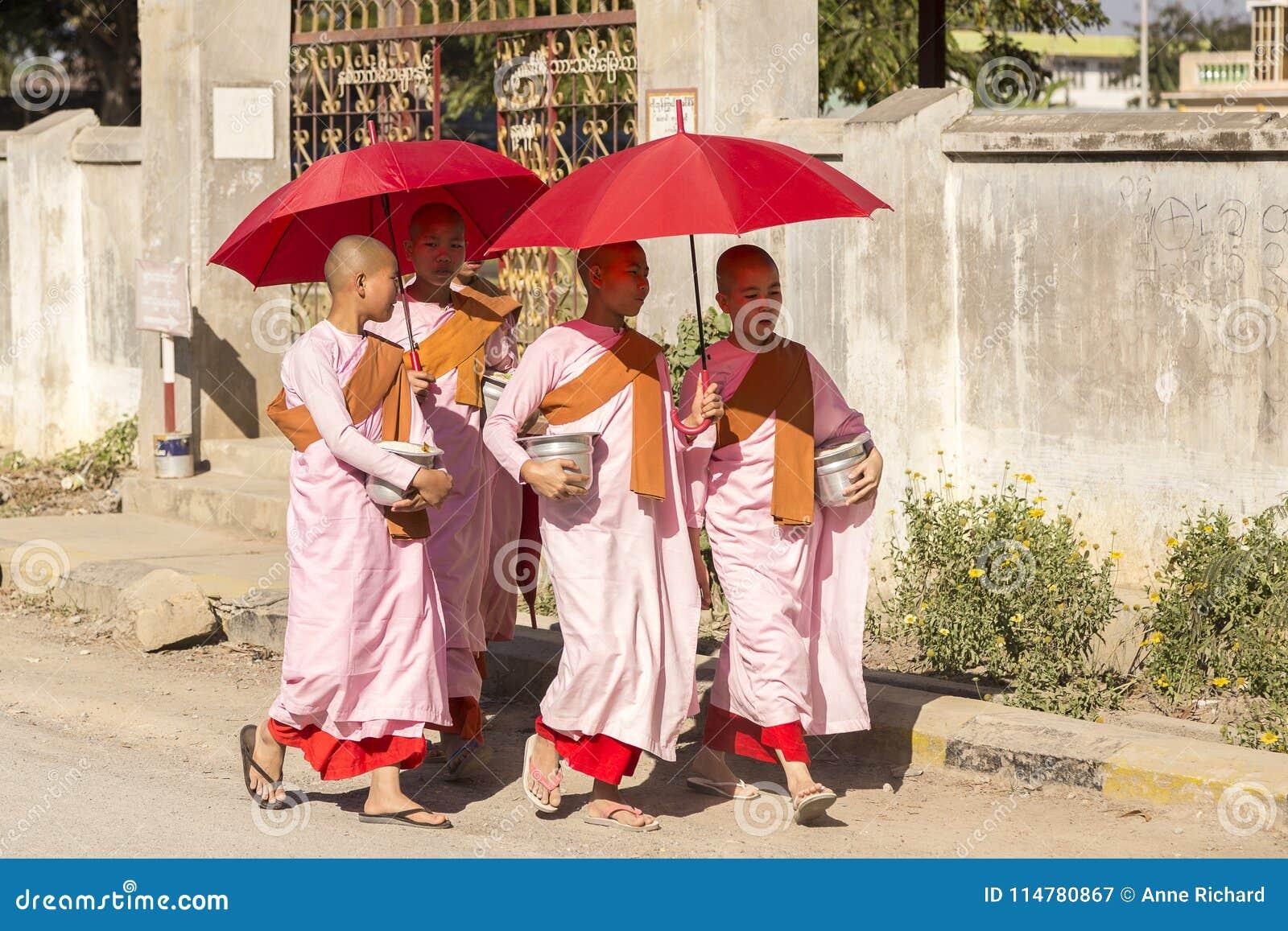 Quatro freiras burmese novas no passeio cor-de-rosa, alaranjado e vermelho das vestes