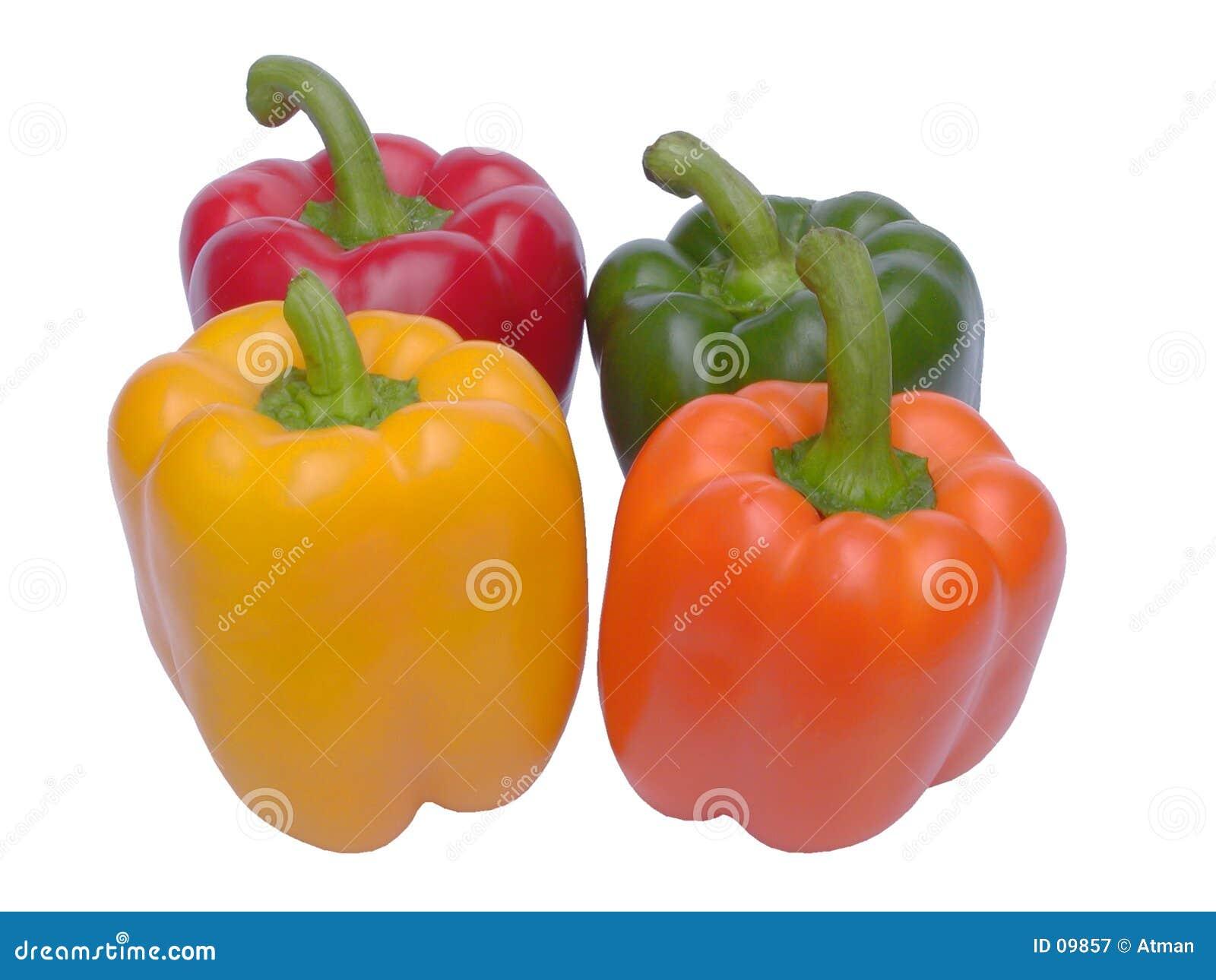 Quatro paprika