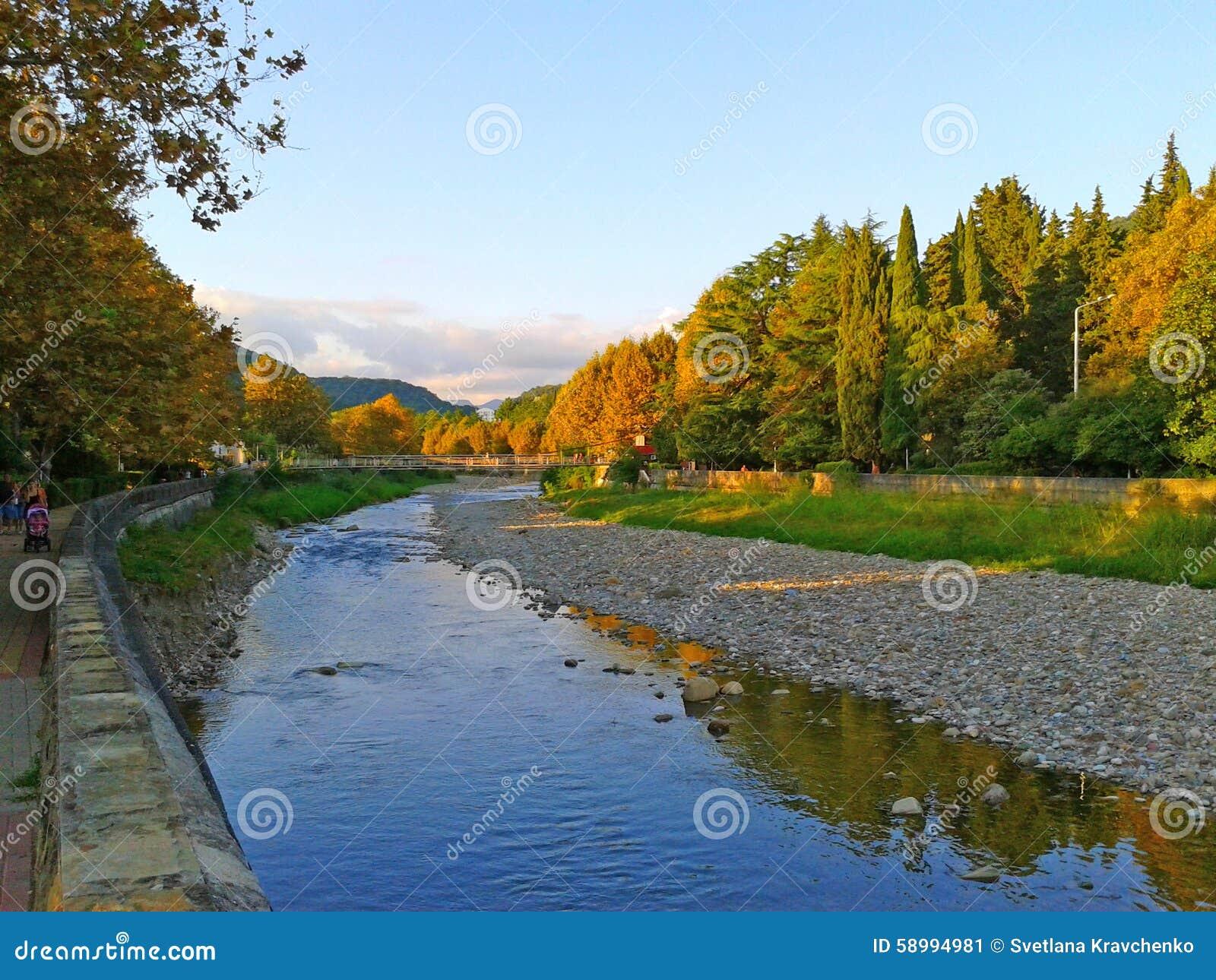 Quay del fiume giallo va sugli alberi piani paesaggio di for Piani di costruzione del costruttore