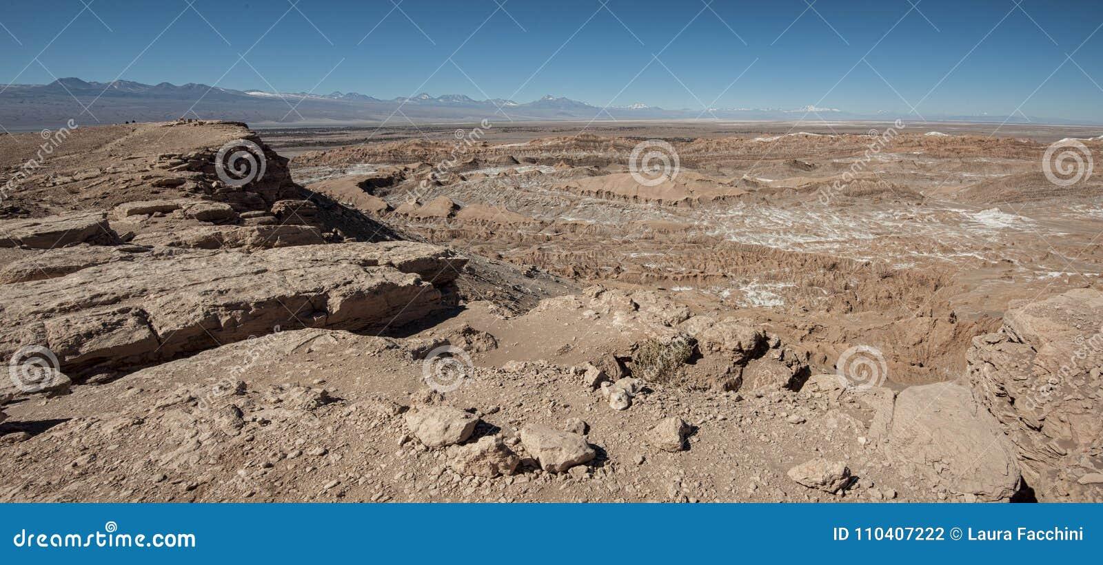 Quebrada del卡里彼德拉del土狼-圣佩德罗火山de阿塔卡马,智利