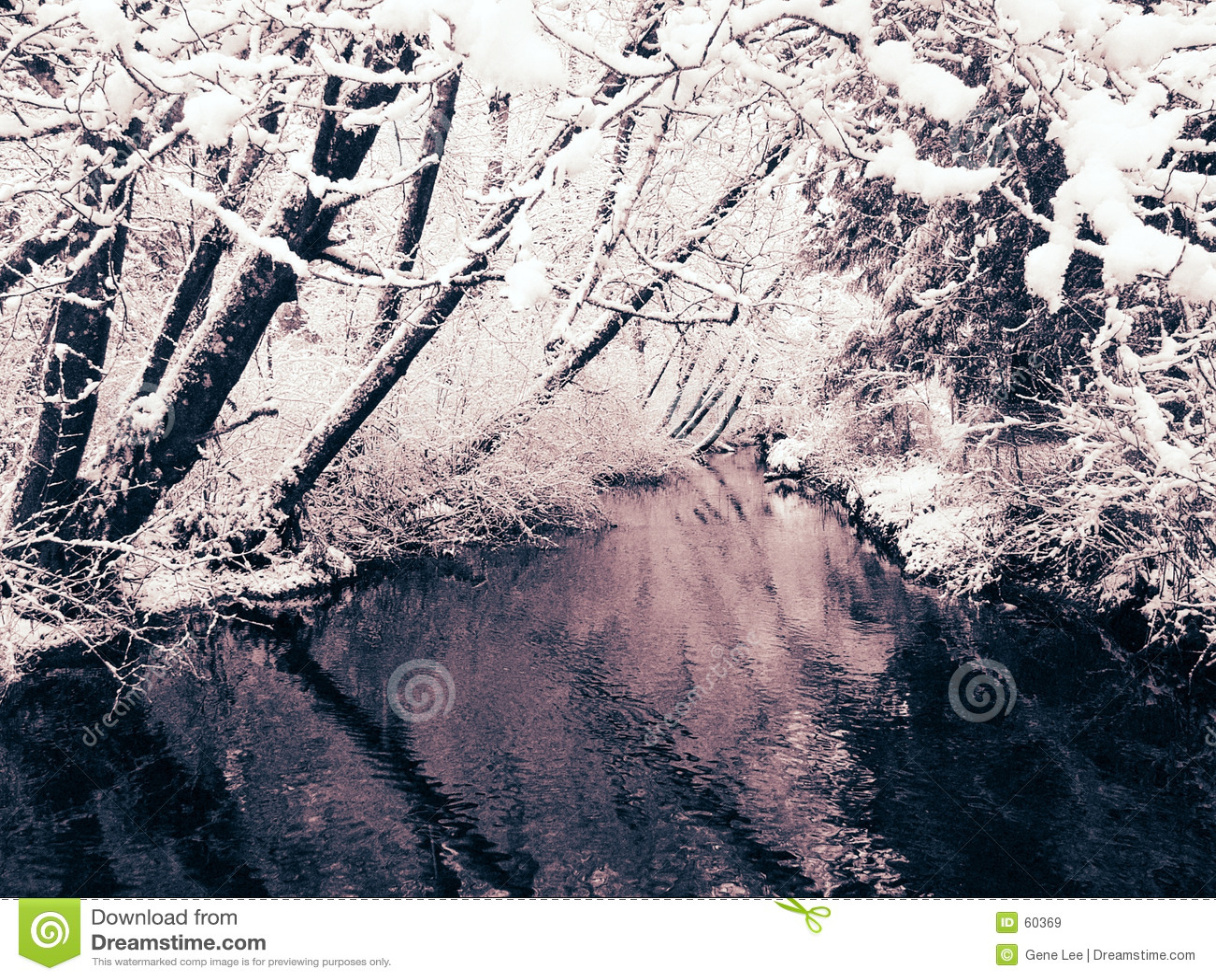 Queda de neve e angra (vista 2)