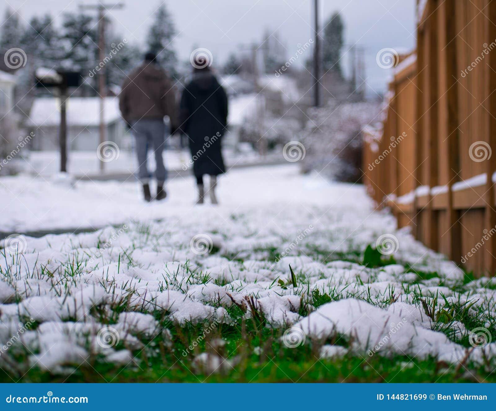Queda de neve em uma cidade pequena