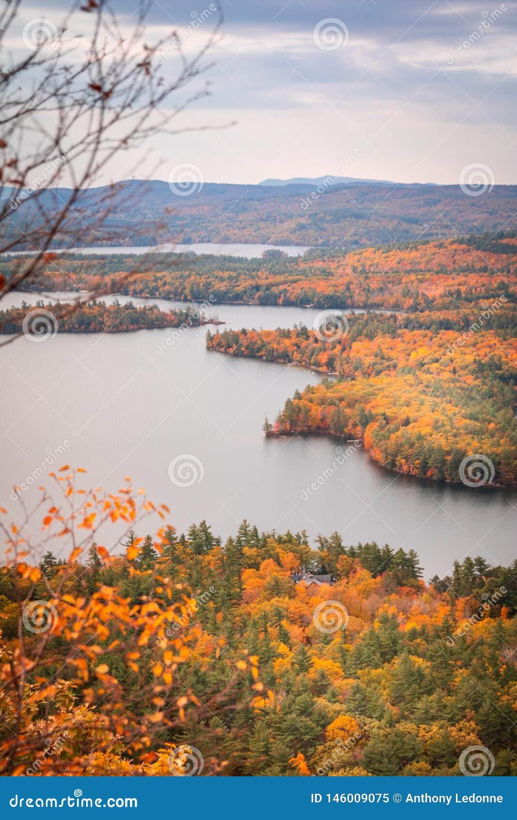 Queda Foilage em New Hampshire