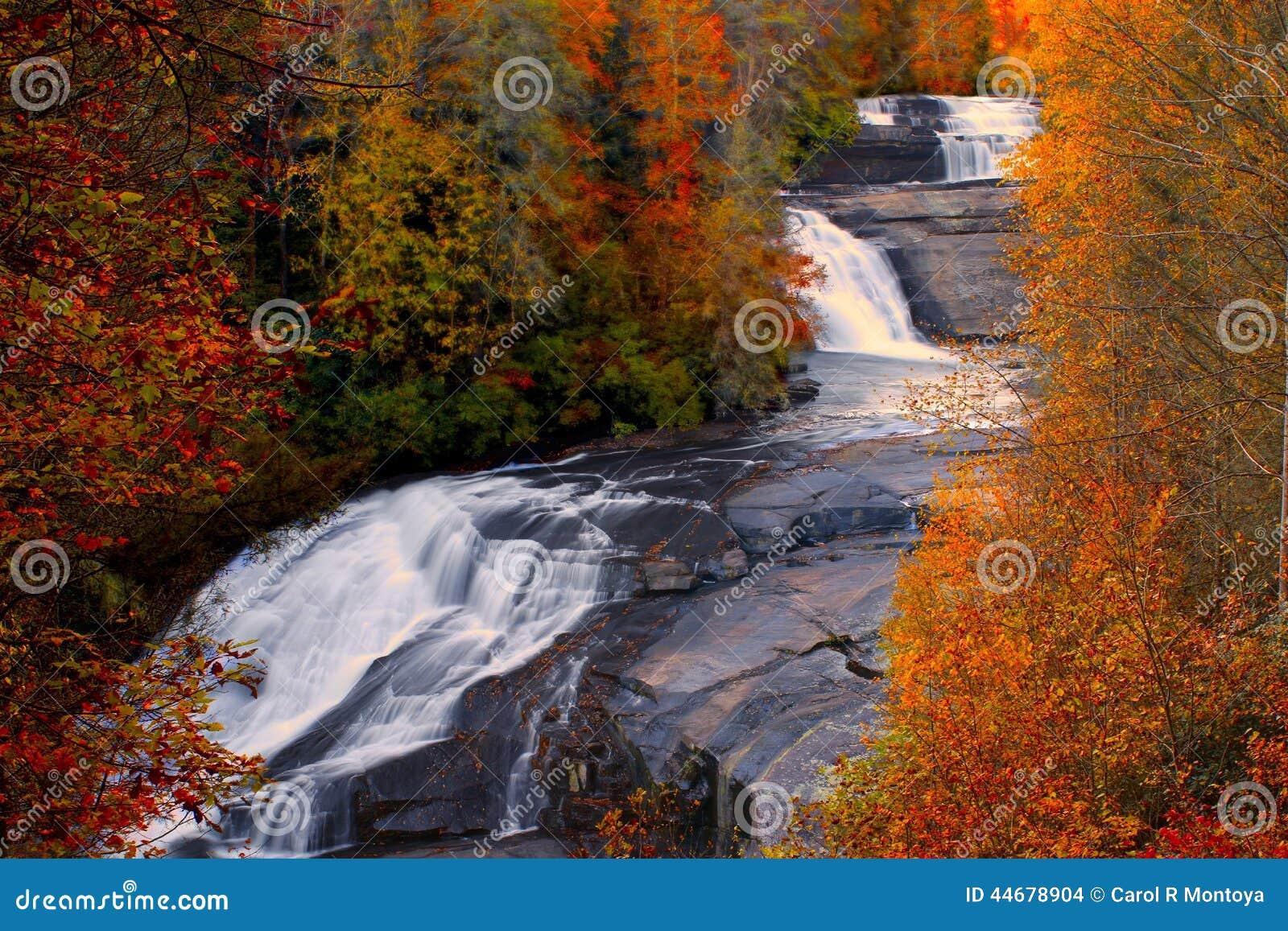 A queda triplicar-se cai na floresta do estado de Du Pont