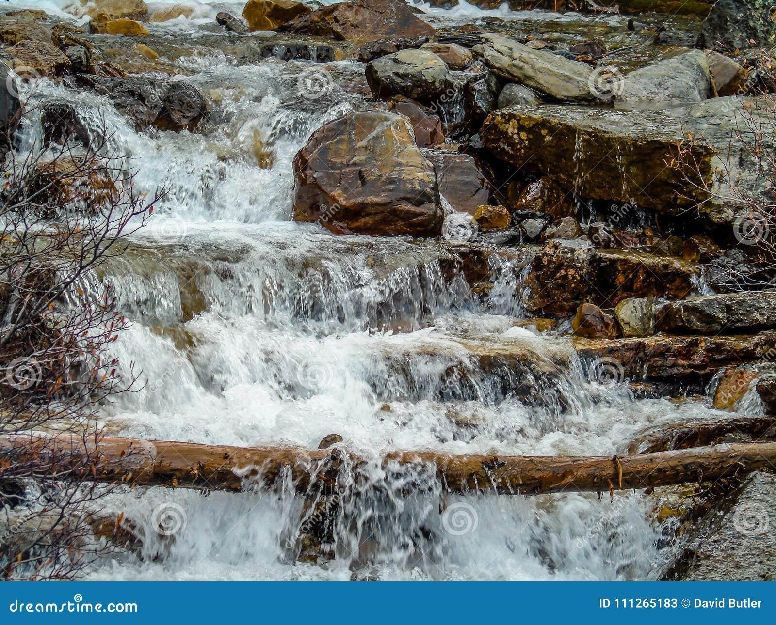 Quedas da angra do emaranhado, Jasper National Park, Alberta, Canadá