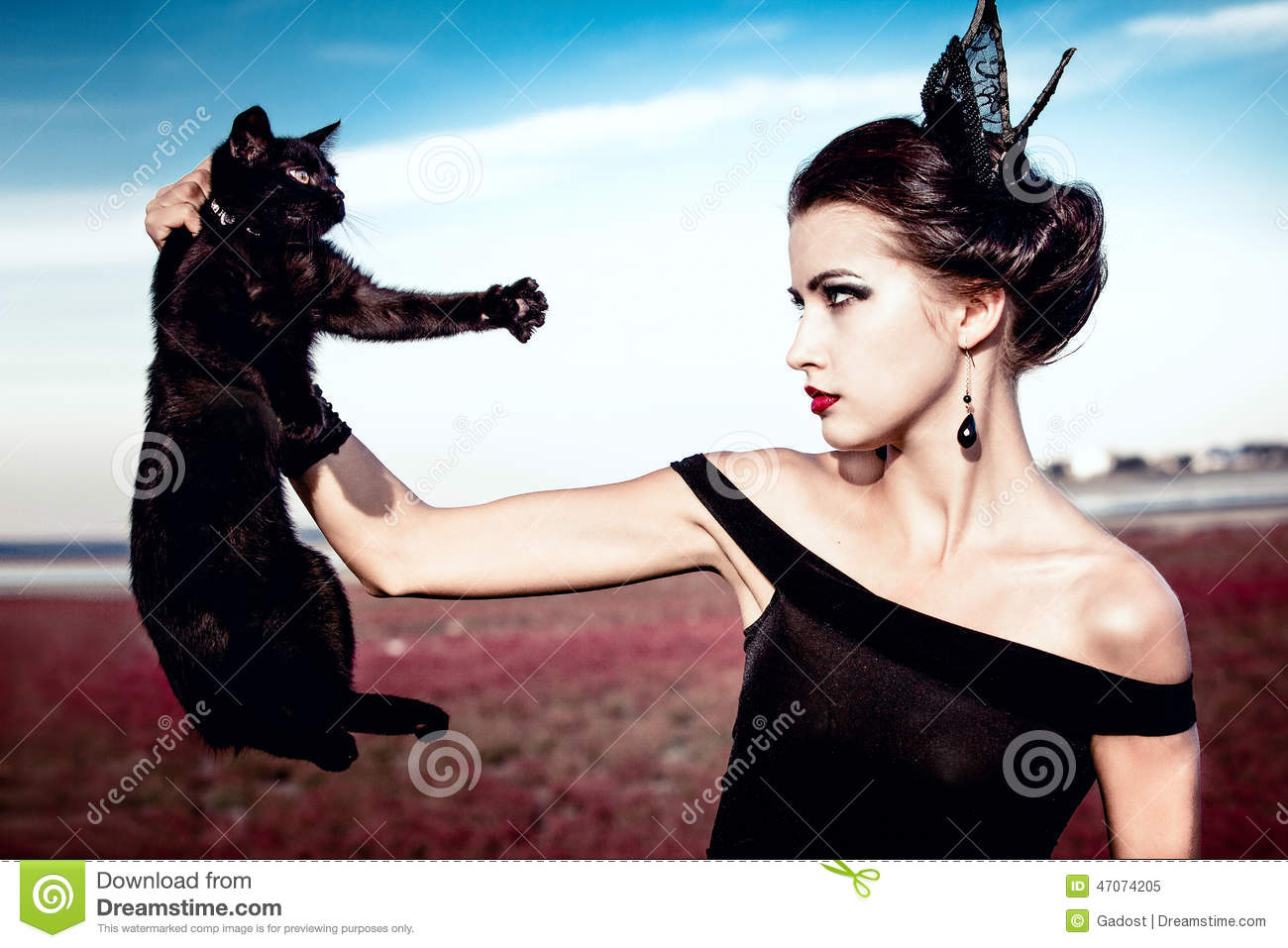 Queen And Cat Stock Image Image Of Couture Background 47074205