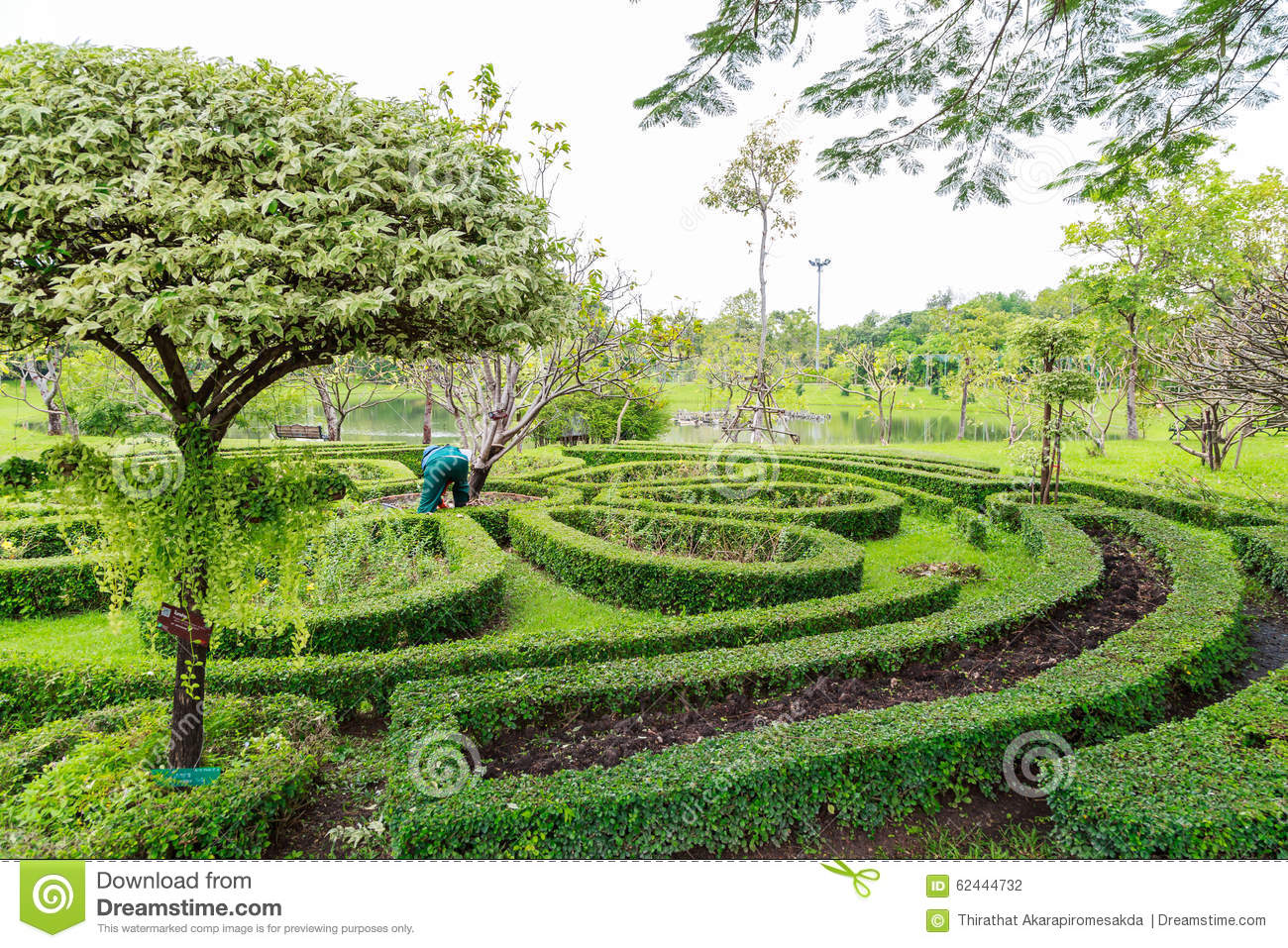 Queen sirikit park bangkok thailand stock photo image for Garden design queens park