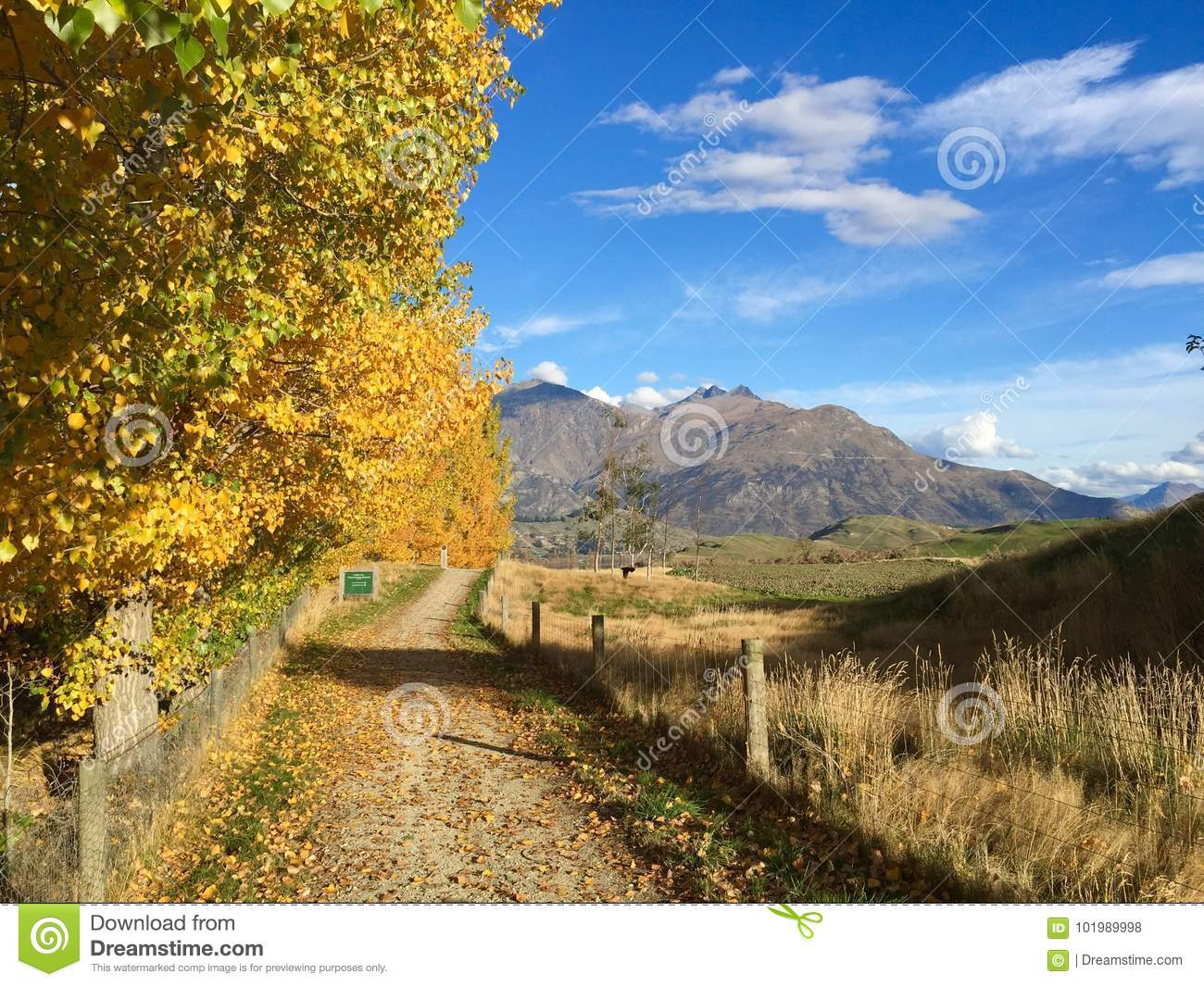 Queenstown Cycle Trail in Autumn Arrowtown
