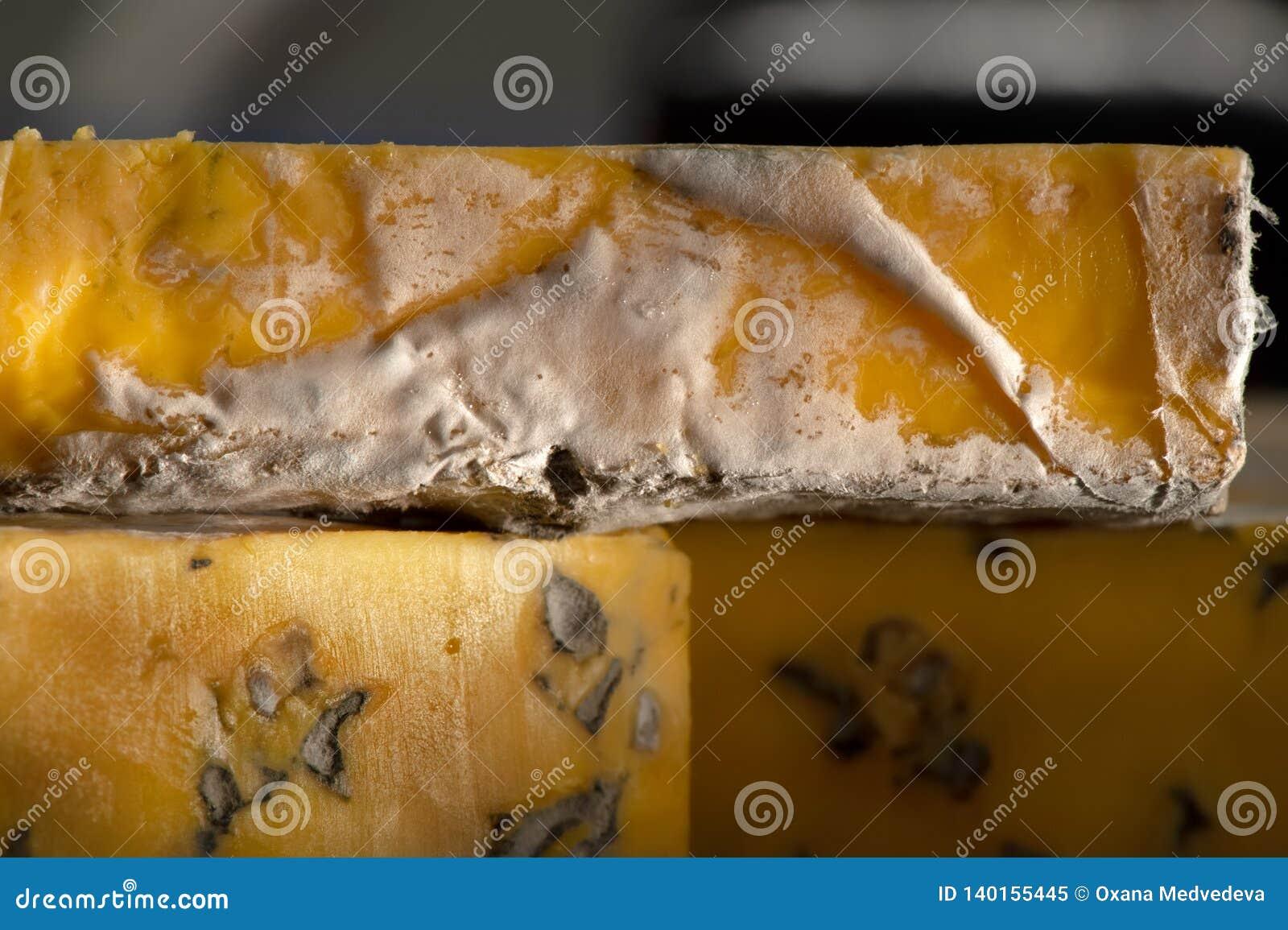 Queijos deliciosos com o tiro detalhado do close-up do queijo azul