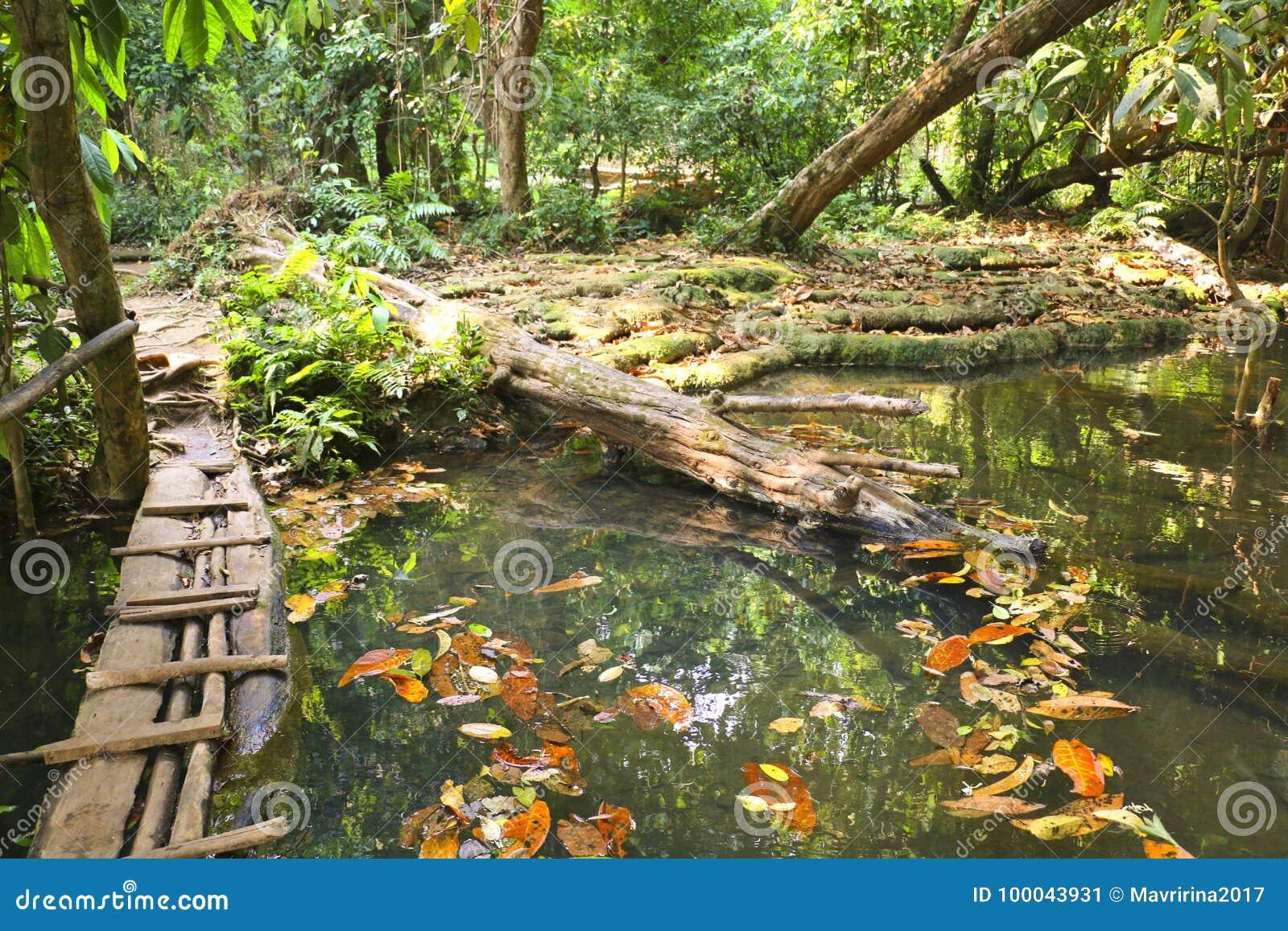 Quelle Kuang Si Waterfalls, Luang Phrabang, Laos