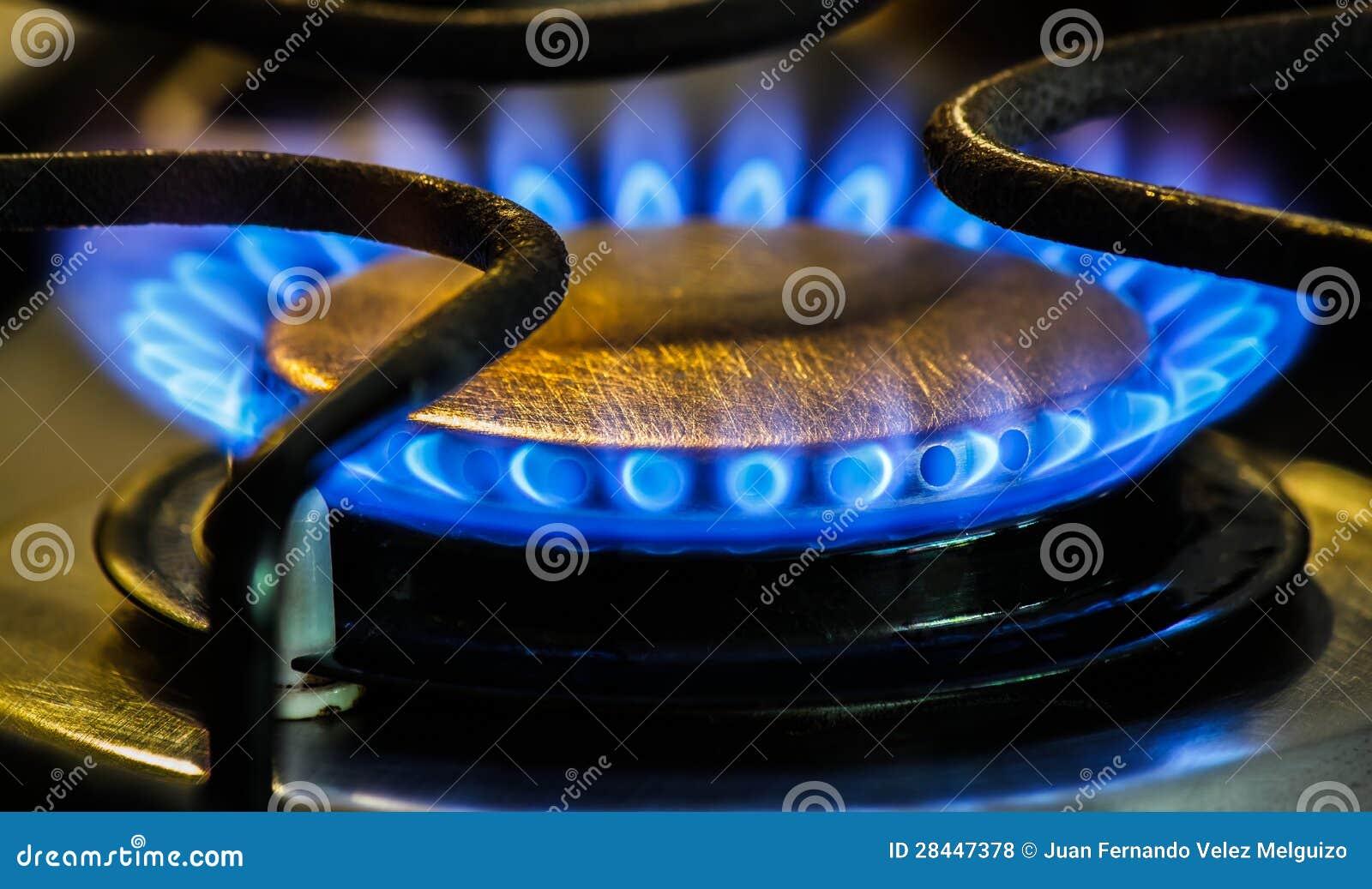 Quemadores de gas naturales de la estufa