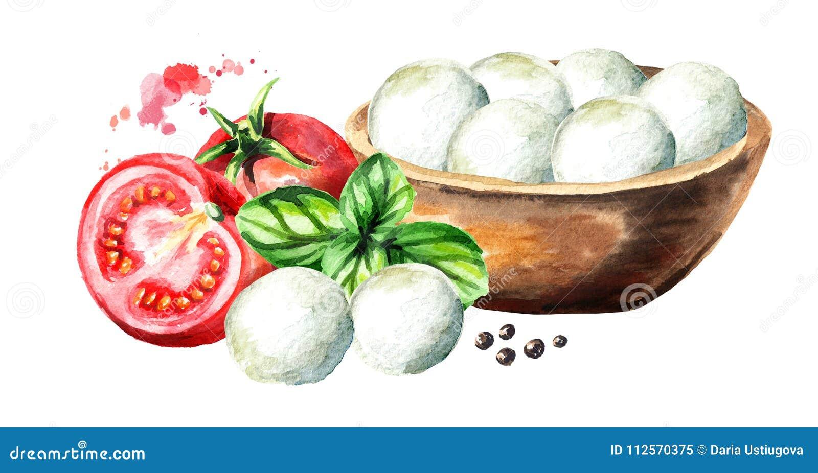Queso en el cuenco, albahaca, tomates de la mozzarella Ejemplo dibujado mano de la acuarela, aislado en el fondo blanco