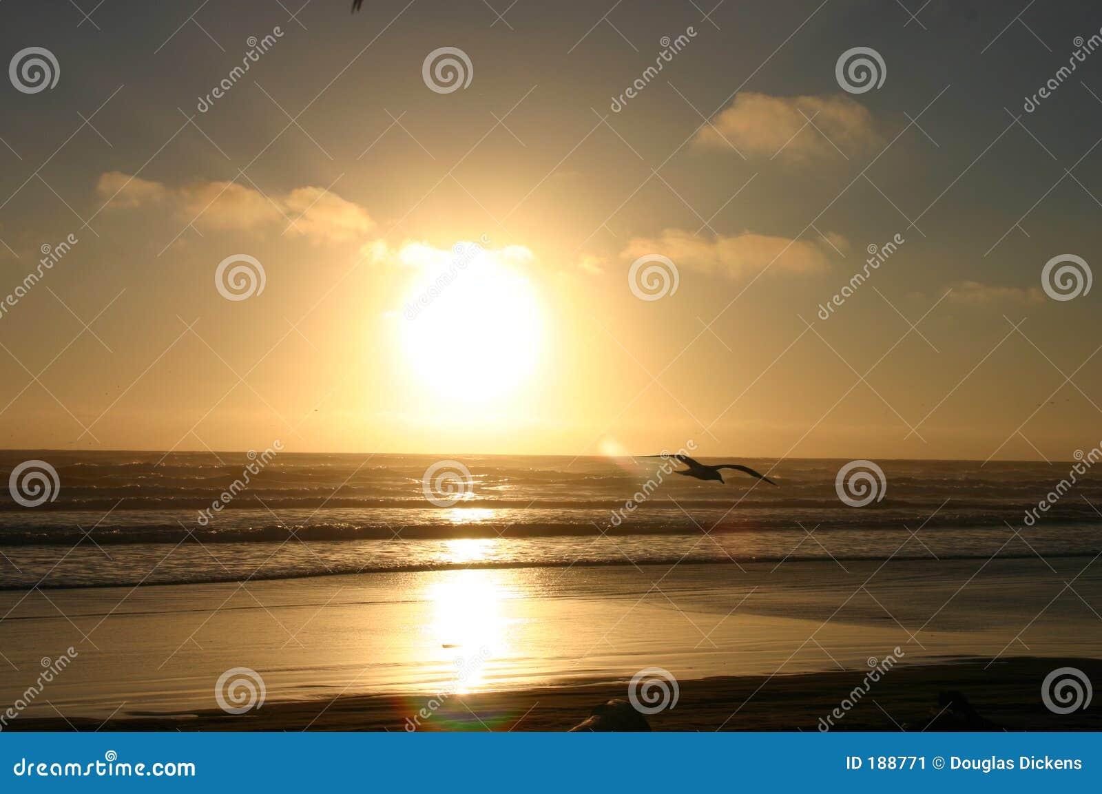 Questo sole per voi